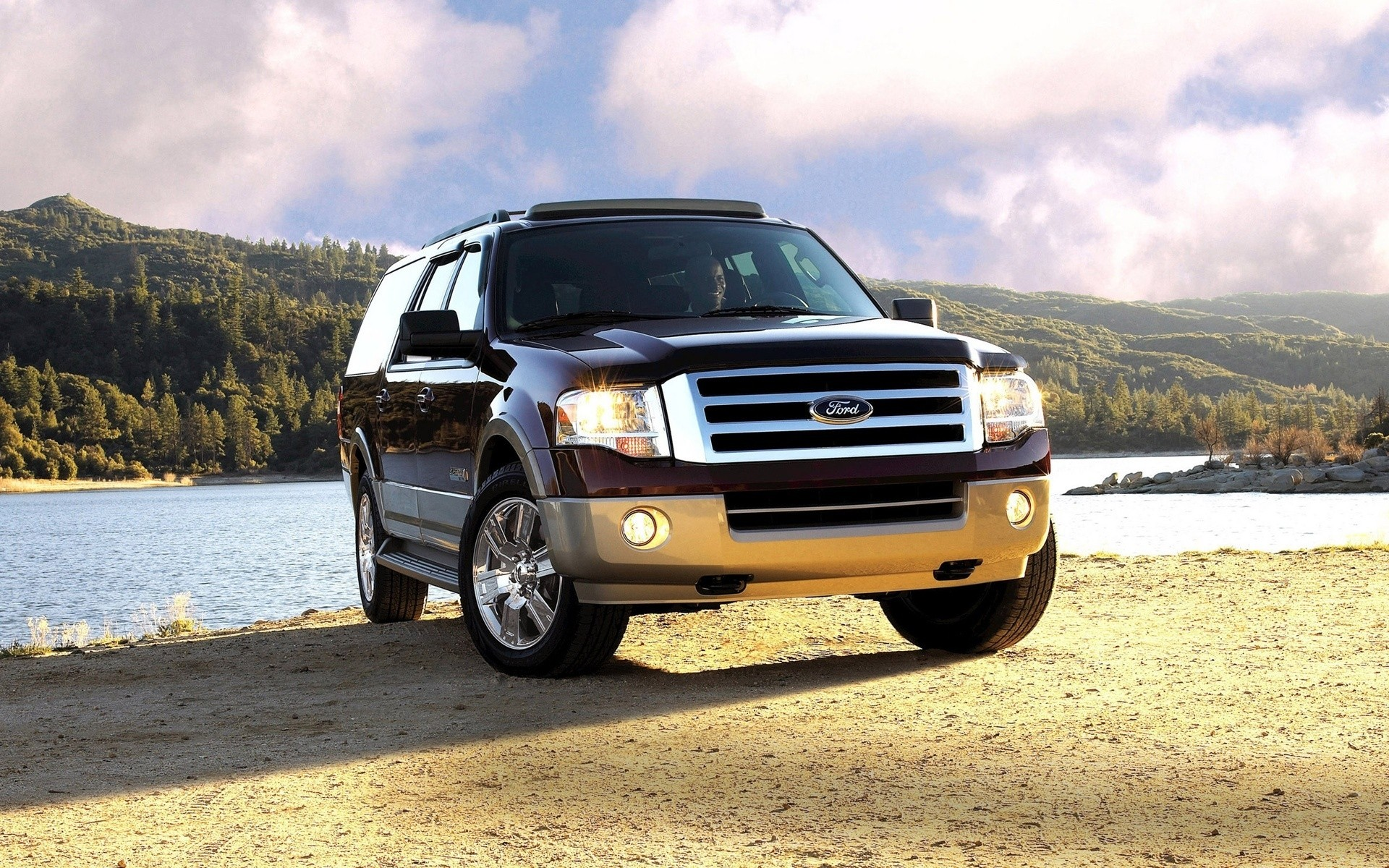 Ford Expedition 2010 года