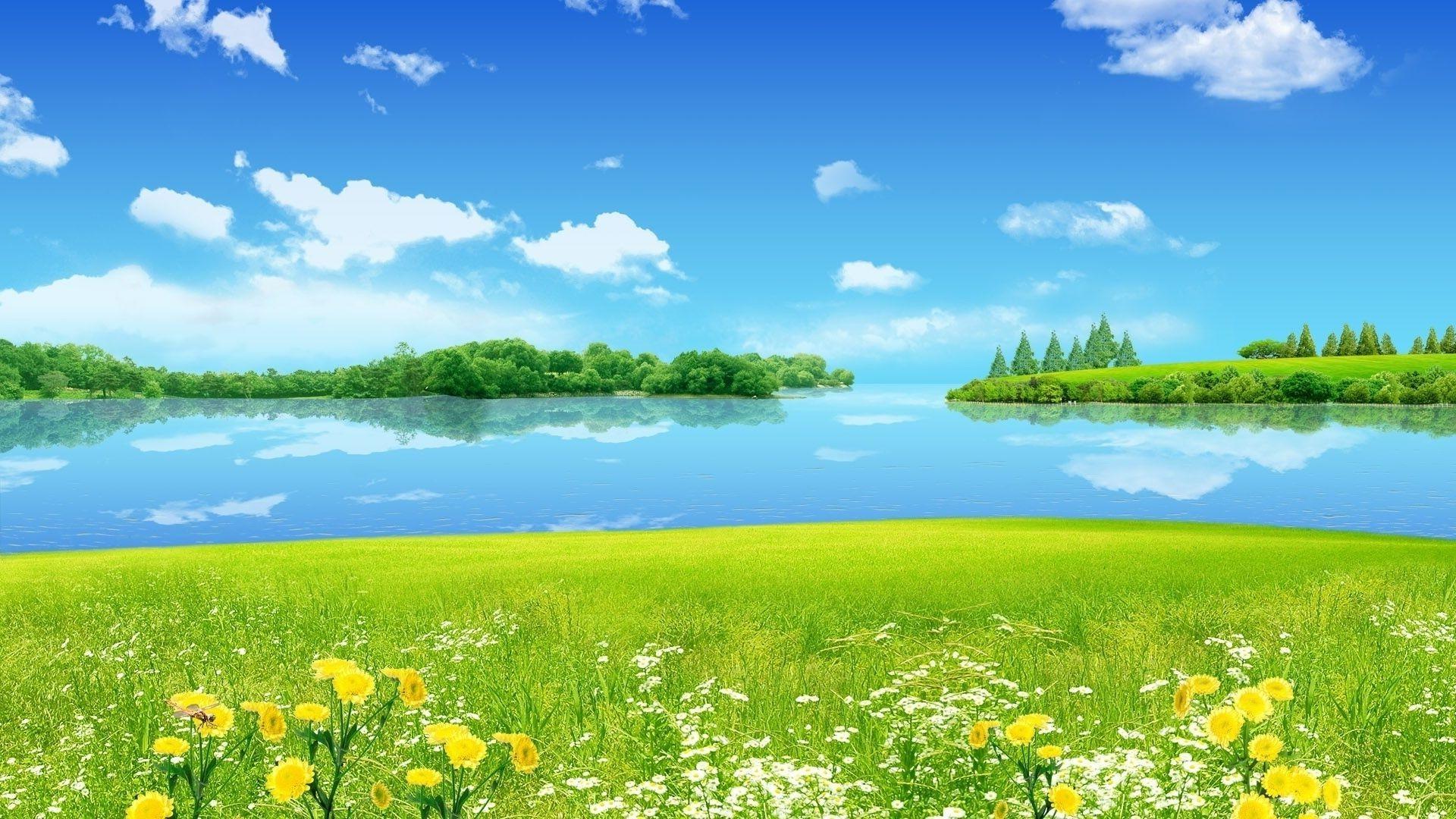 солнце лужайка березы  № 2741935 бесплатно