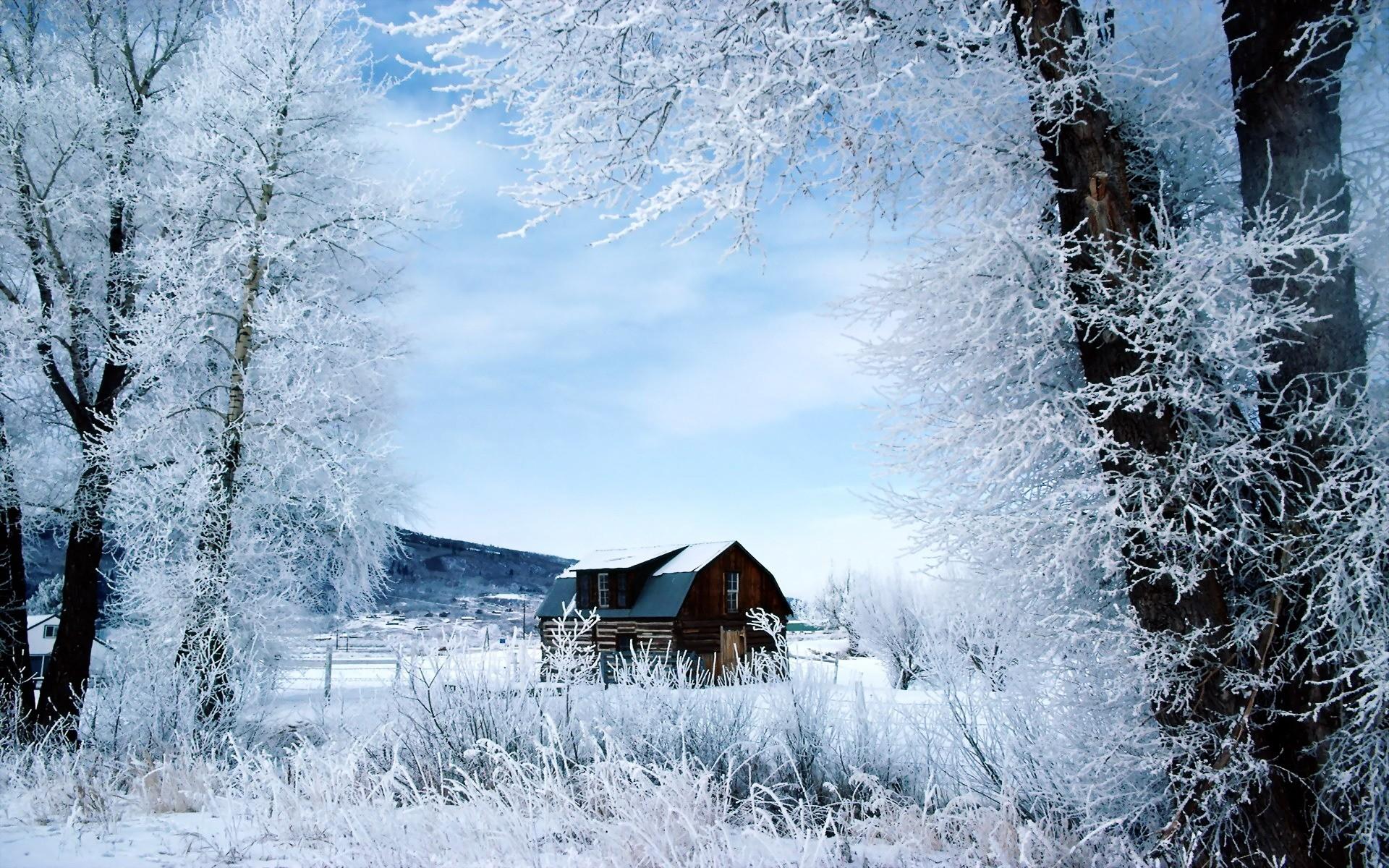 герани обои на рабочий стол русская зима в деревне дома словом