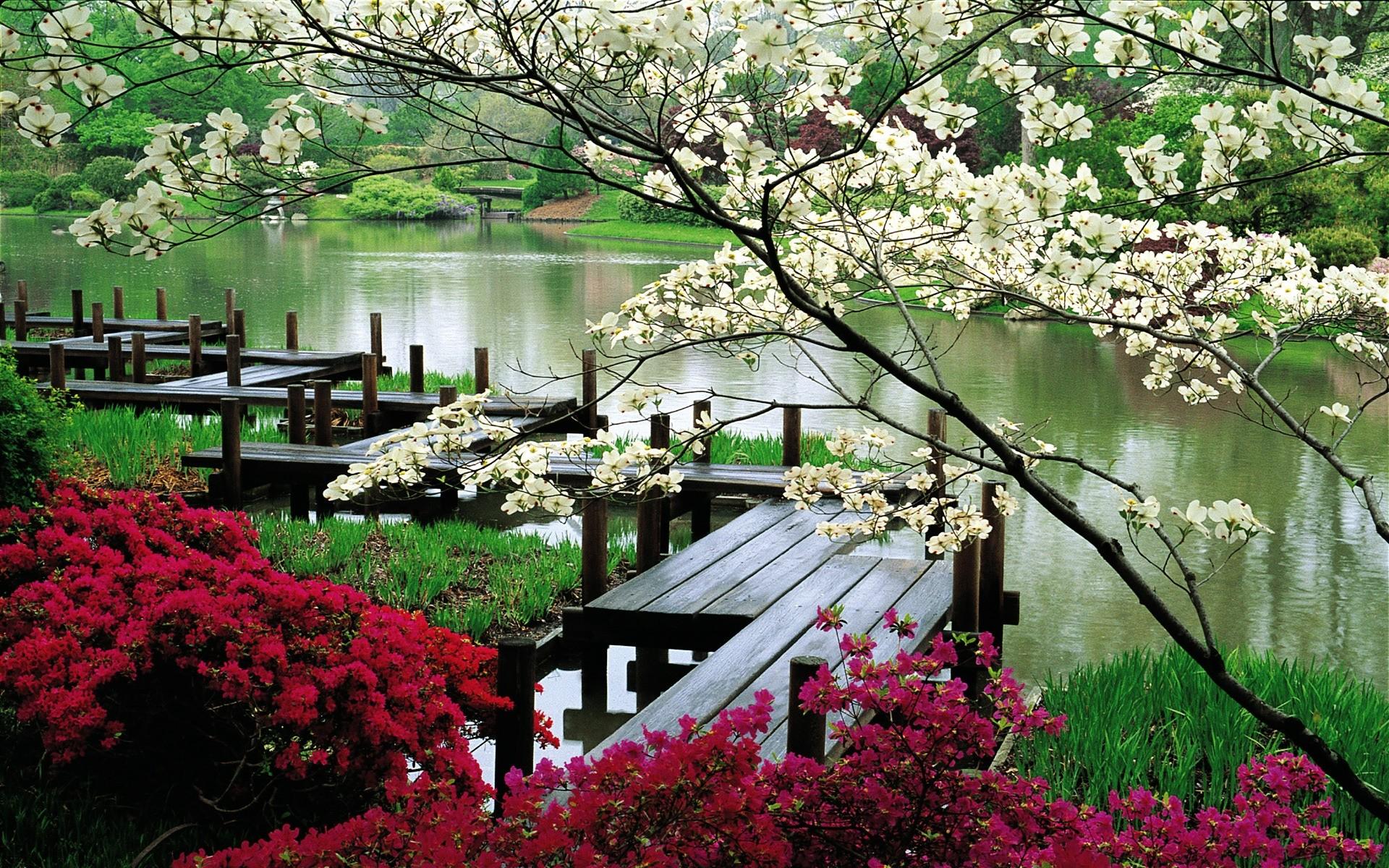 тобой японский сад картинки для рабочего стола куганак, ресторан