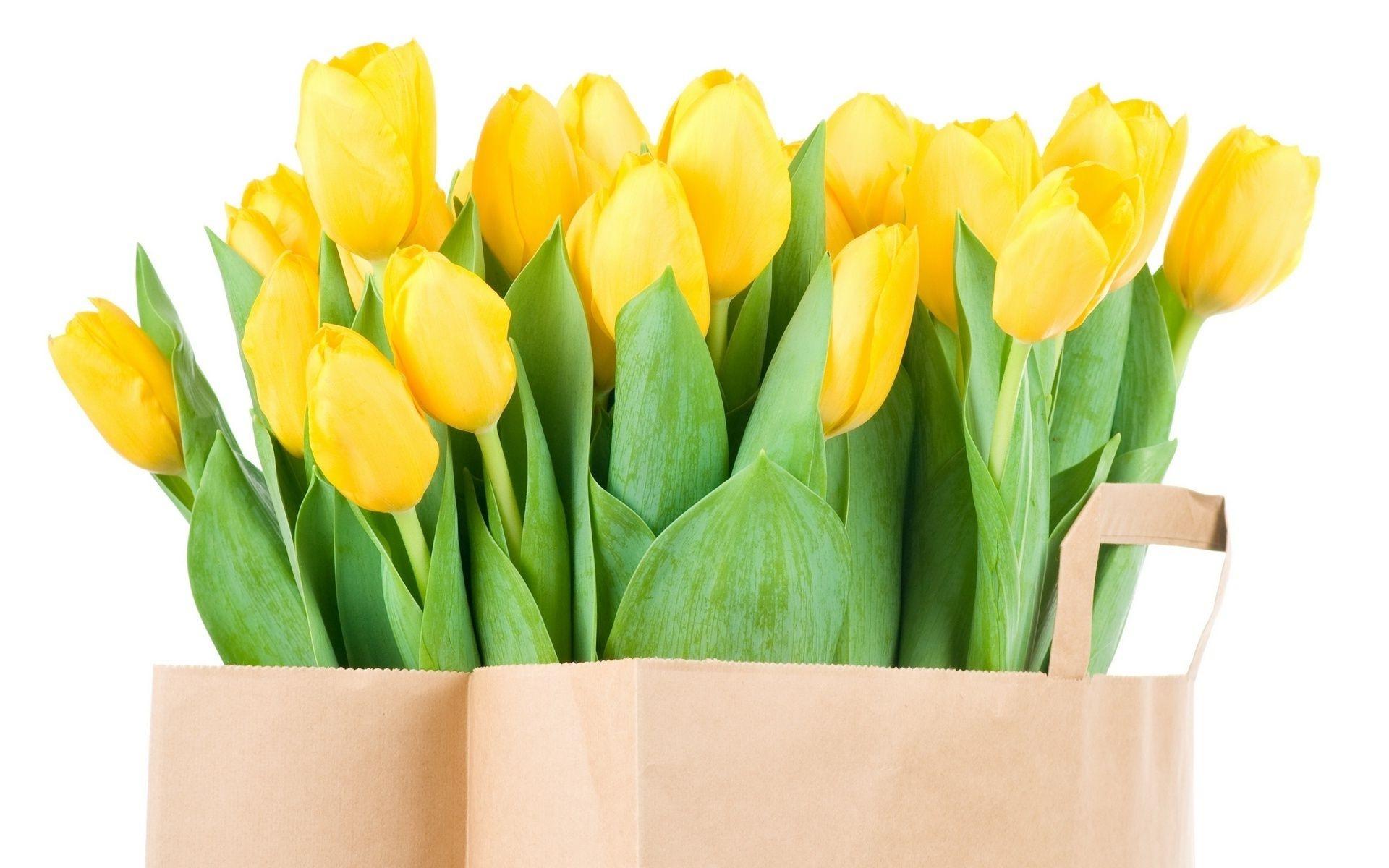 Картинки на рабочий стол букеты тюльпанов