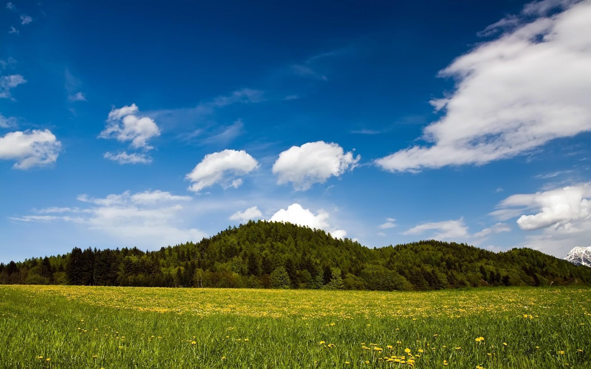 Проста, картинки летний пейзаж красивые