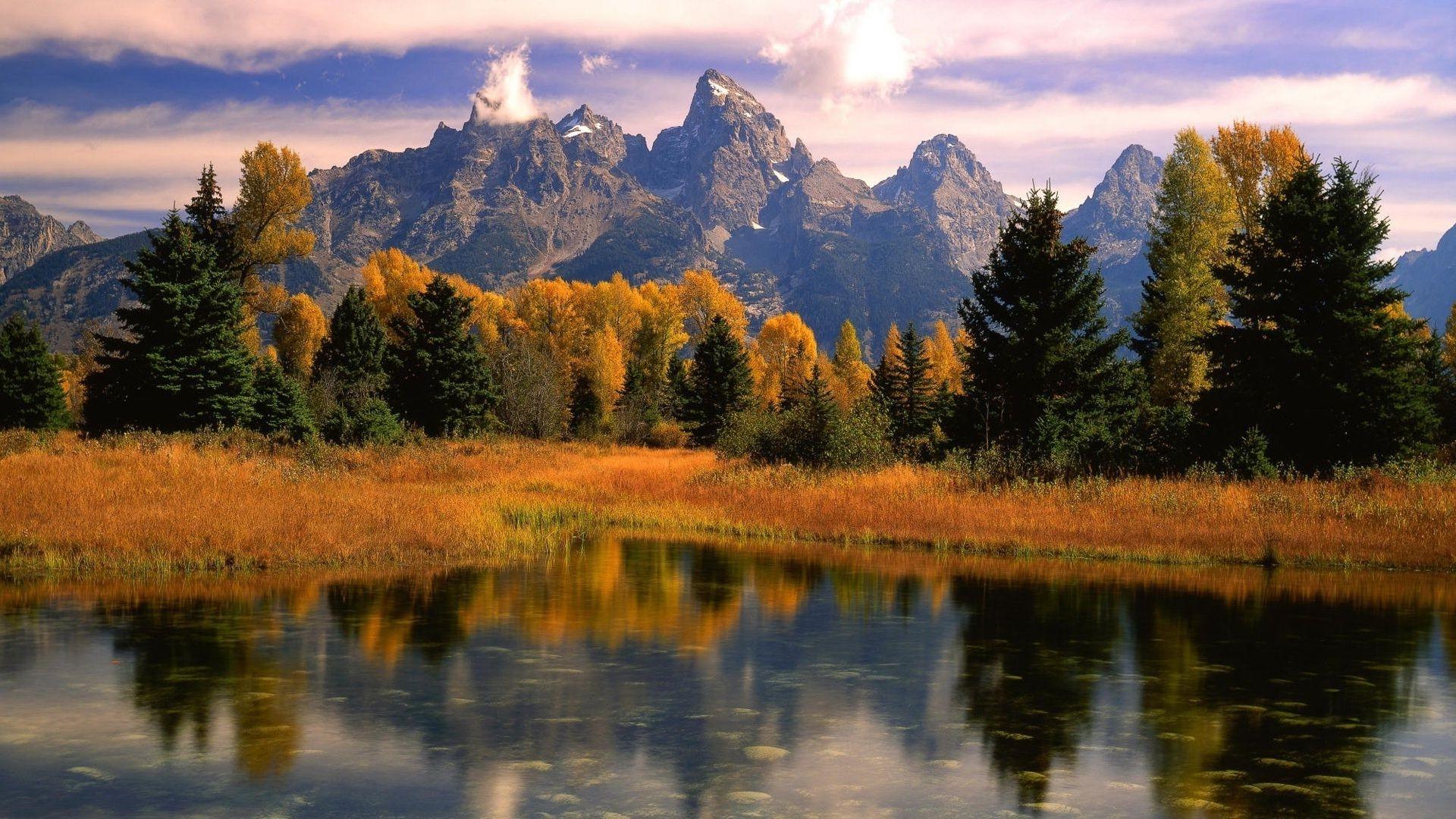 природа деревья осень озеро отражение горы онлайн