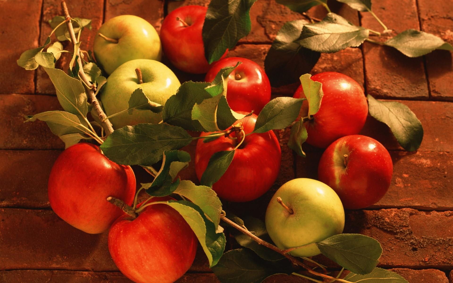 Обои для рабочего стола осень яблони