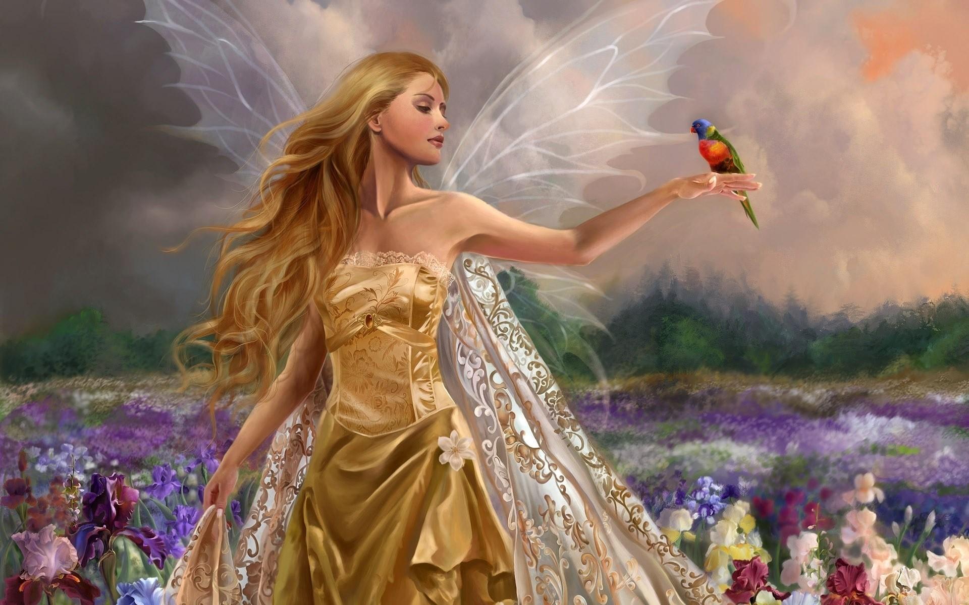 картинки фея читает сладкой