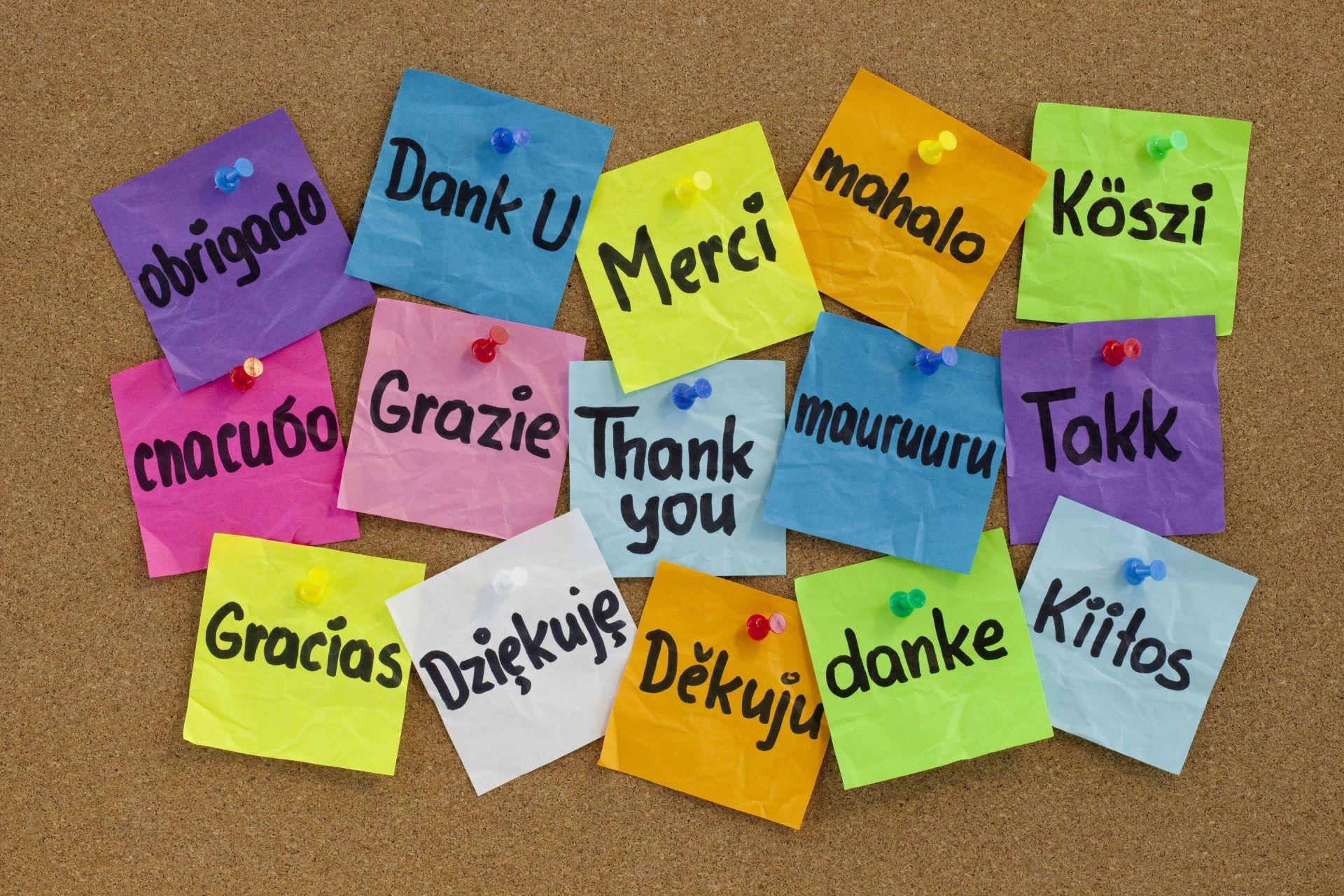 спасибо за поздравления перевод на английский проводилась