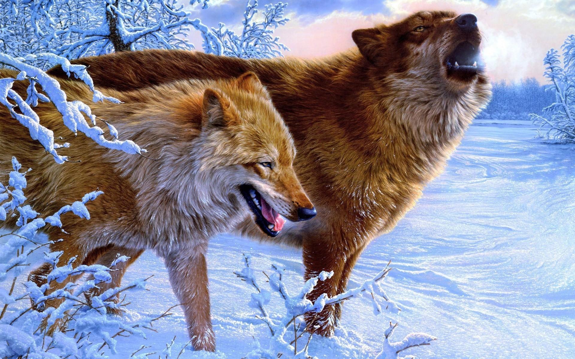 есть ли волки в перми тонкое