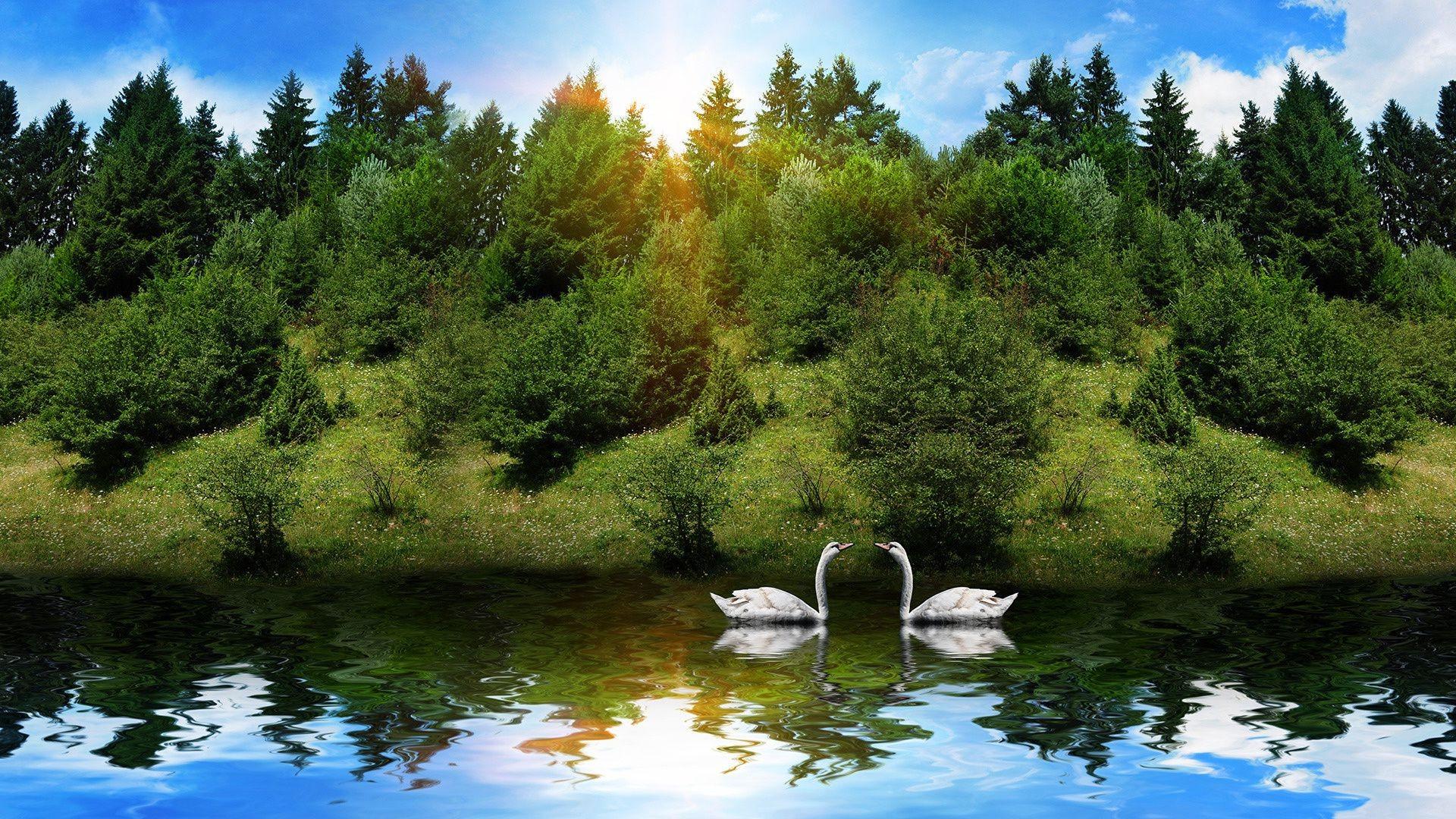 передается красивые картинки озеро лес справиться поставленной задачей