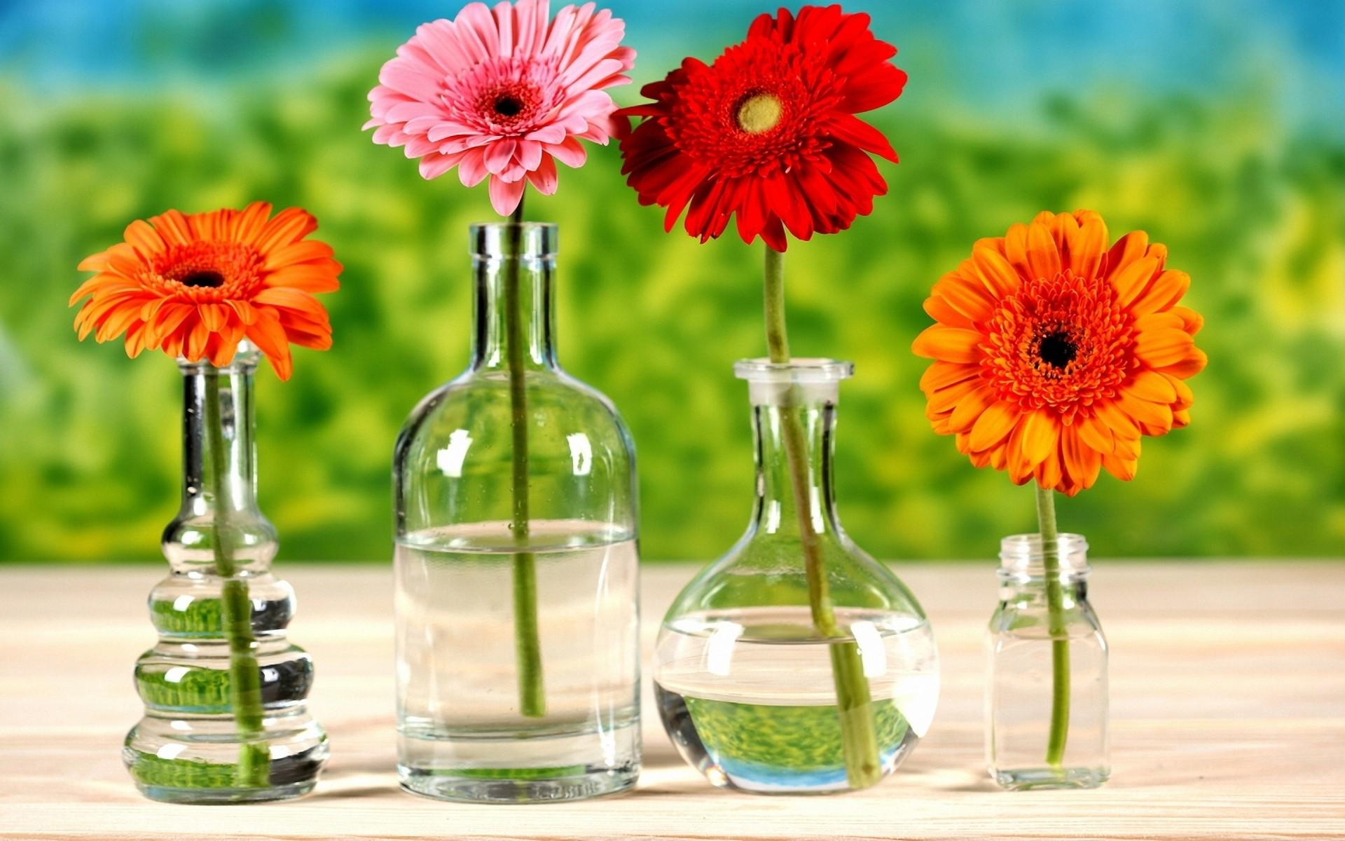 Как выглядит ваза с желтым цветком в аватарии фото