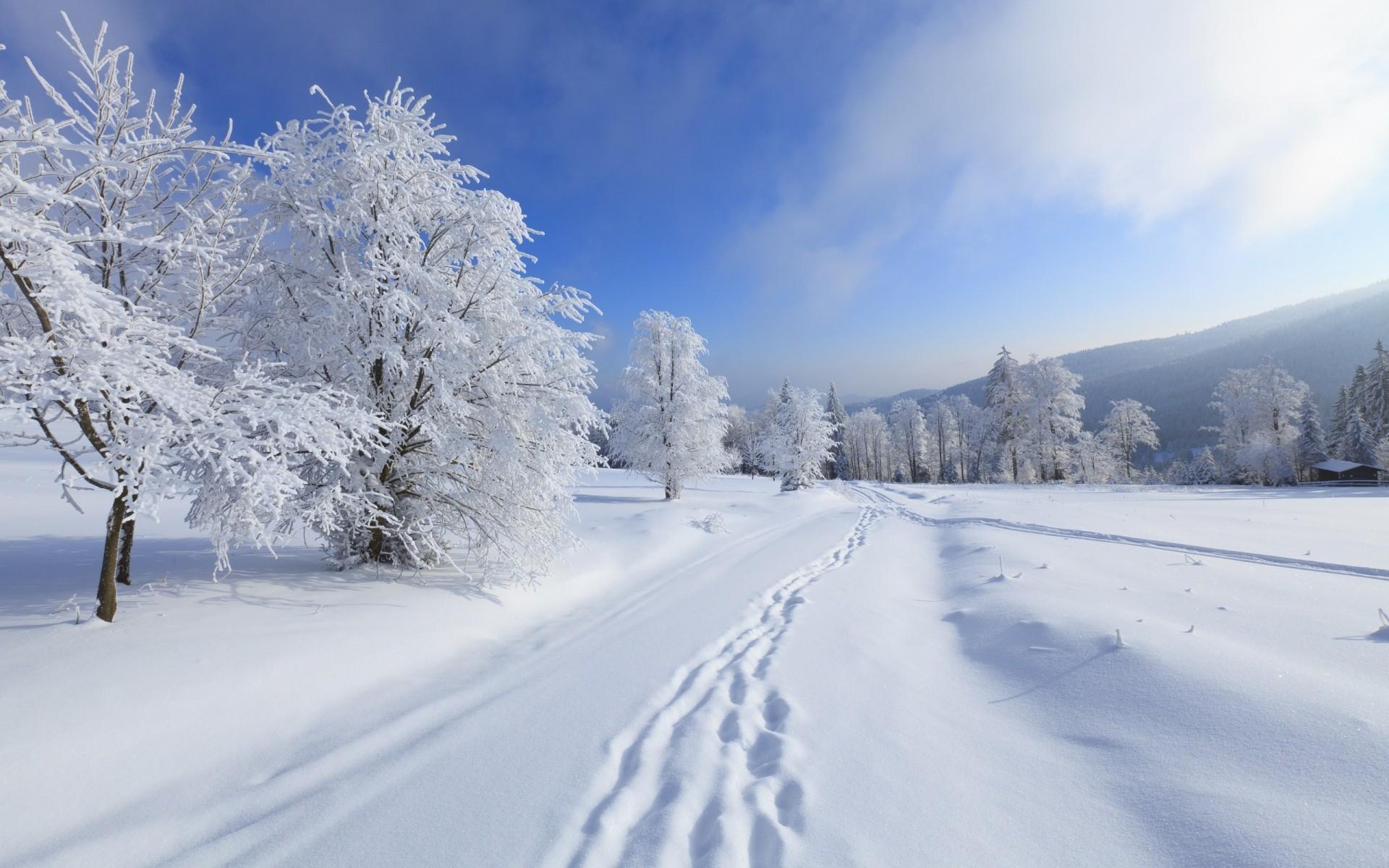 Картинки для рабочего стола зима