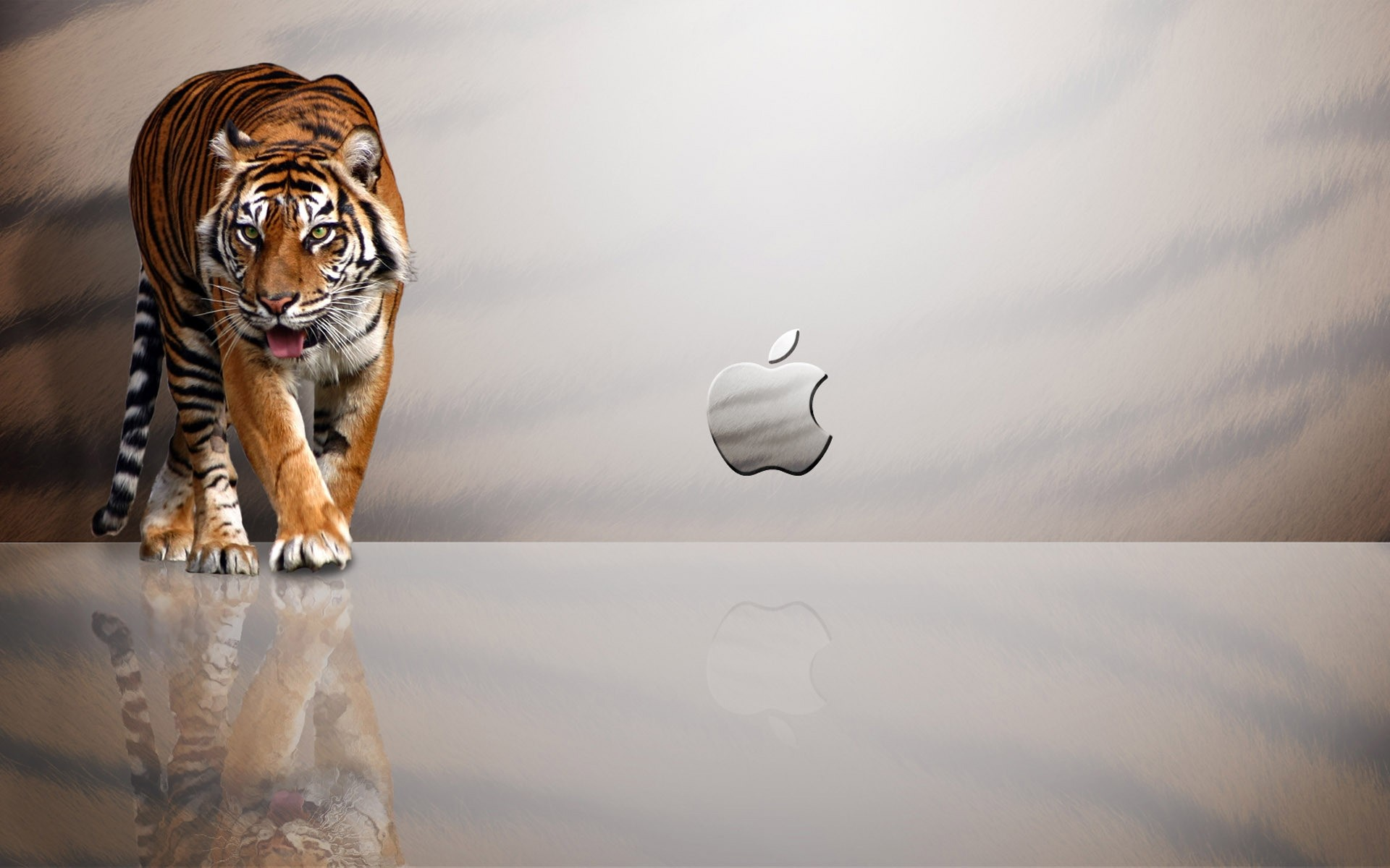обои на телефон тигрята фотообои одному основных типов