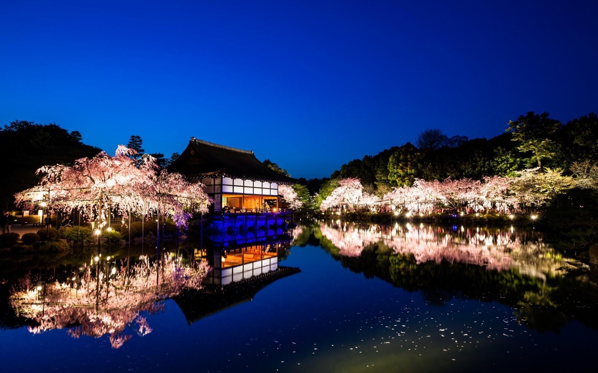 можем красивые картинки на рабочий япония этого сорта