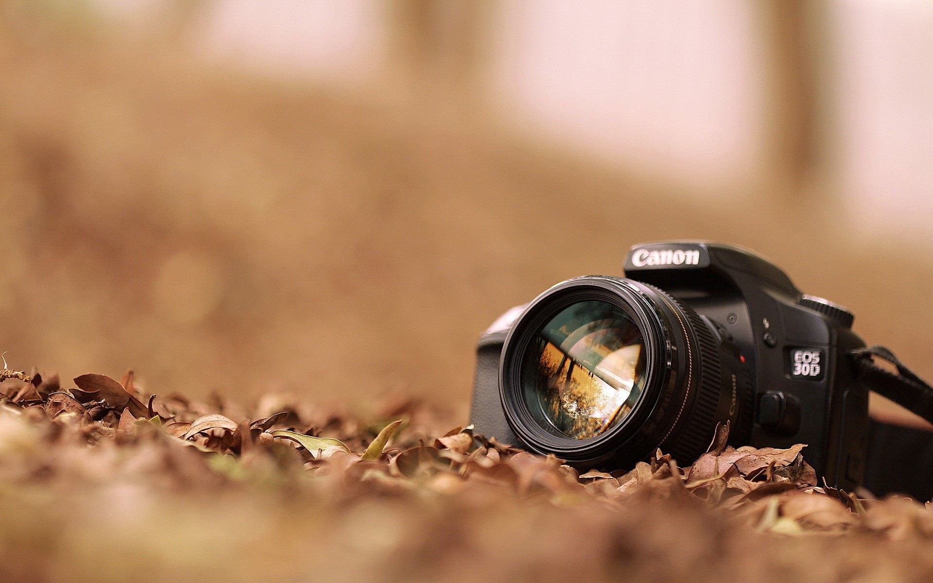 Canon 1100d foto recenzja 52