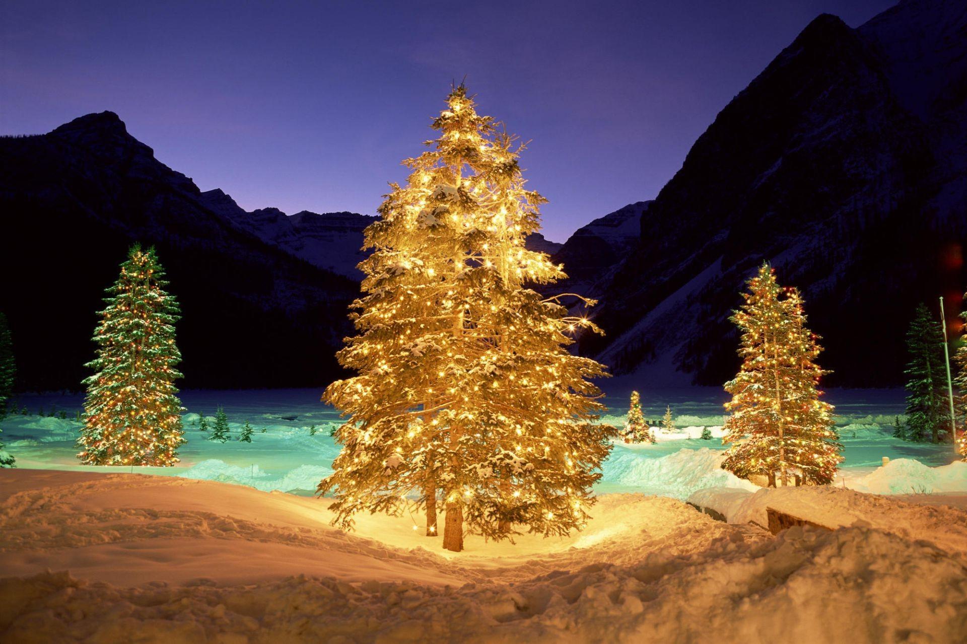 Разговор телефону, новогодняя елка открытки и фотографии