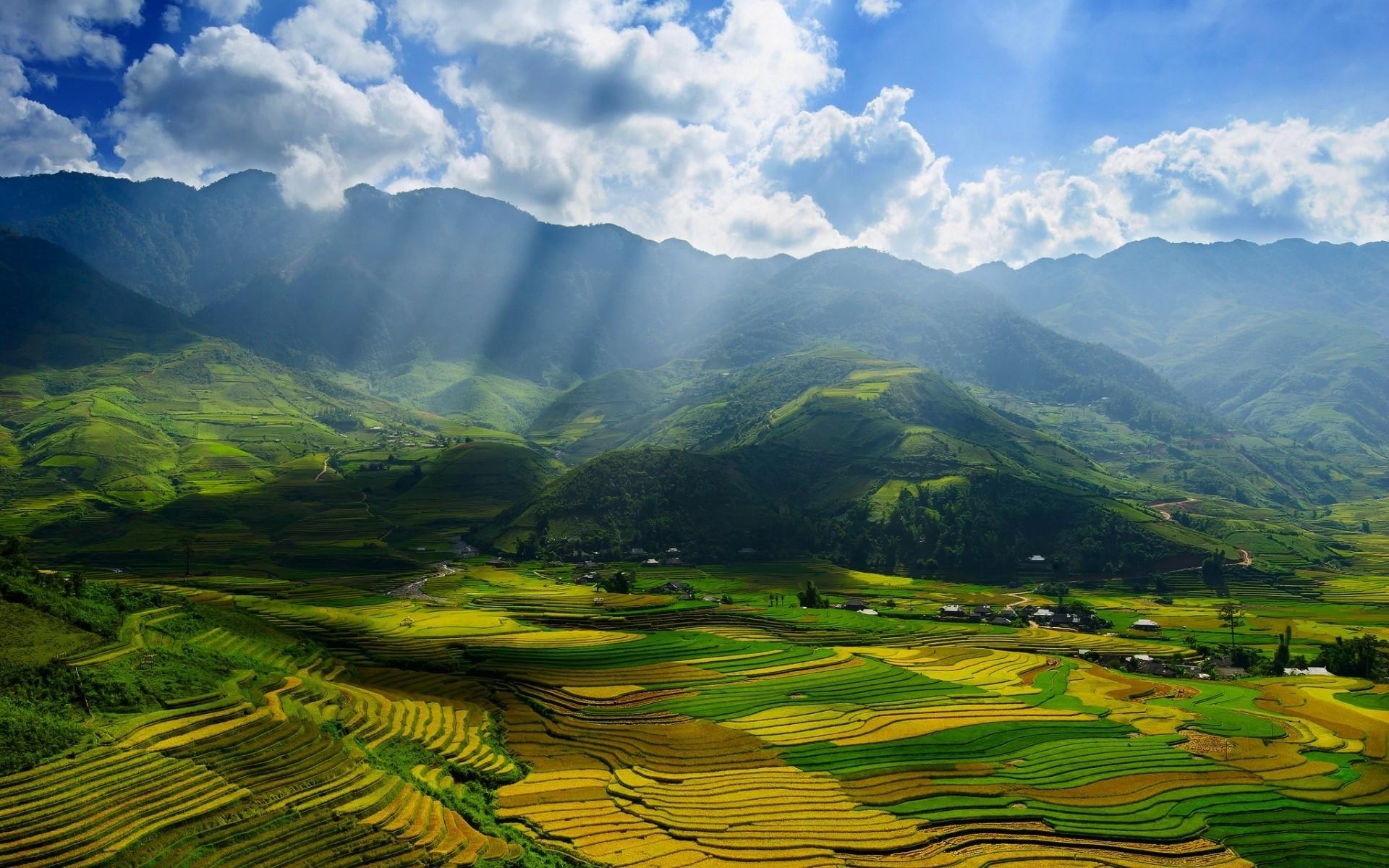 Петербург и Вьетнам может связать прямой авиарейс