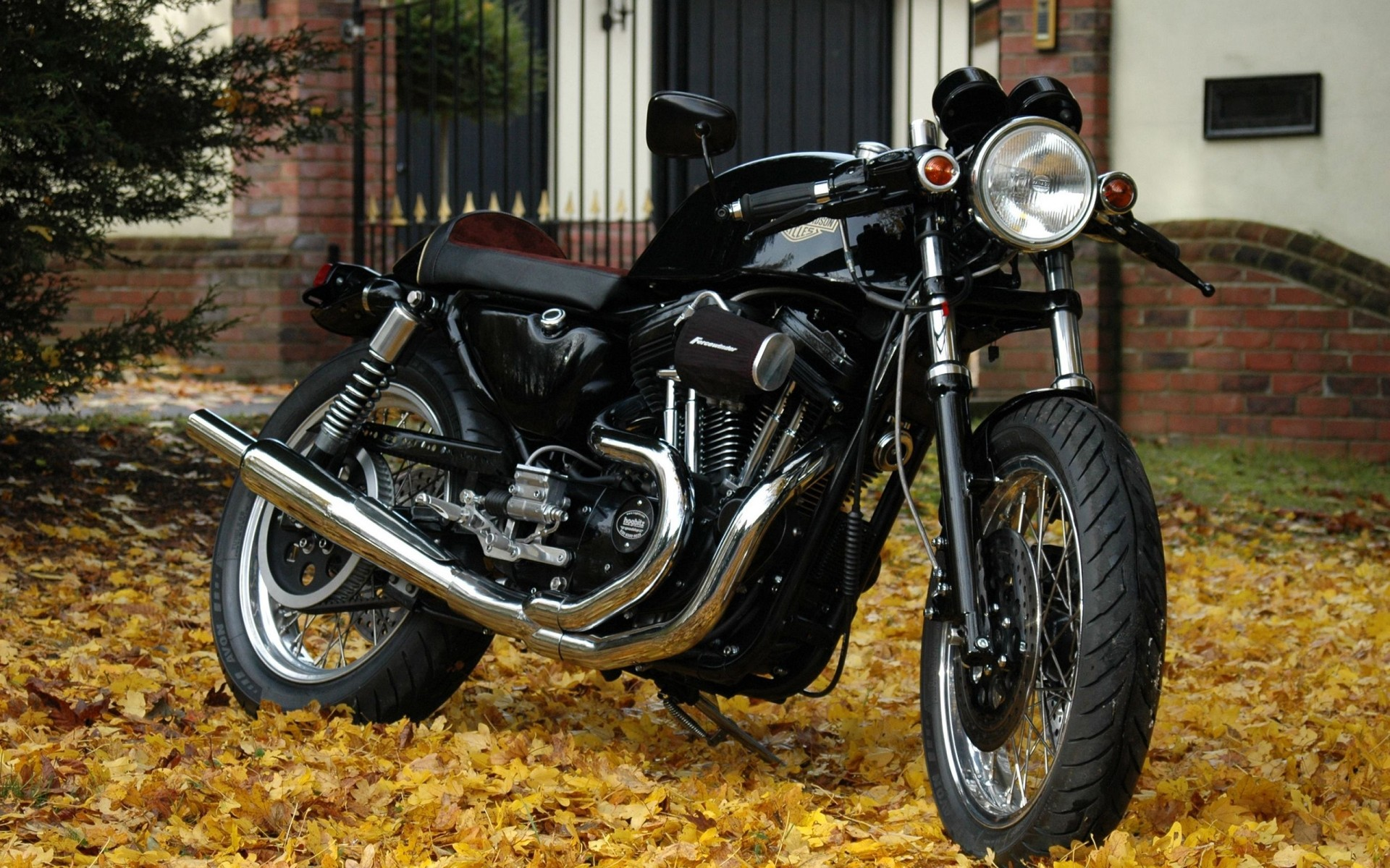 фото мотоцикла харлей дэвидсон накладки