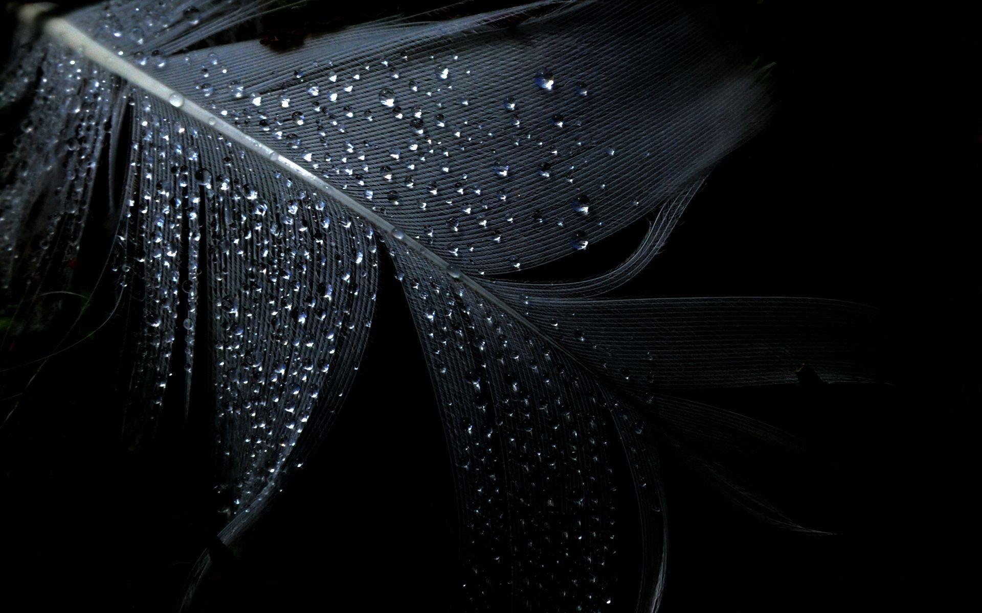 Девушки в мокрой одежде  homeonegoru