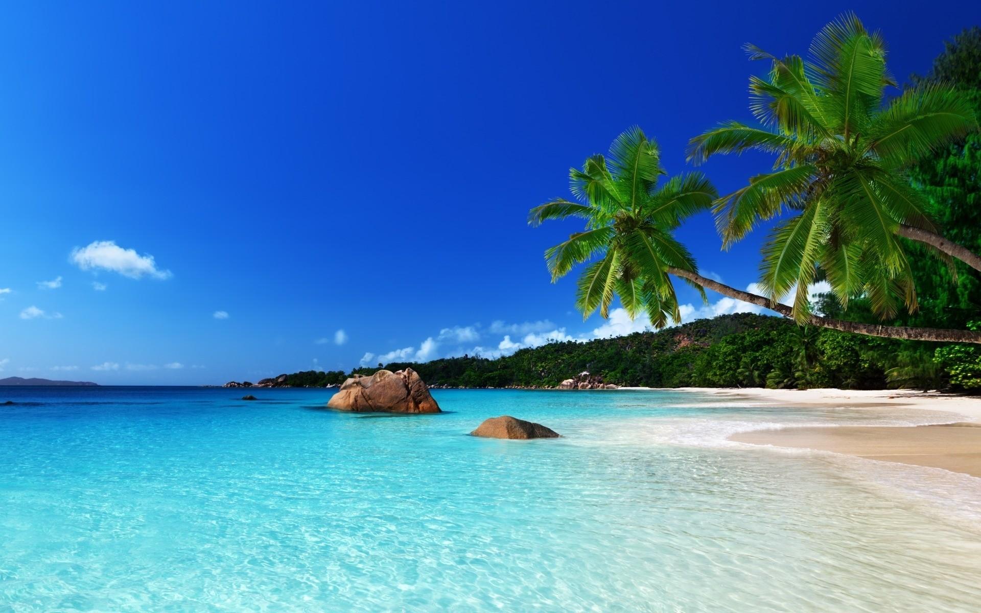 Морской пейзаж картинки скачать бесплатно на 12
