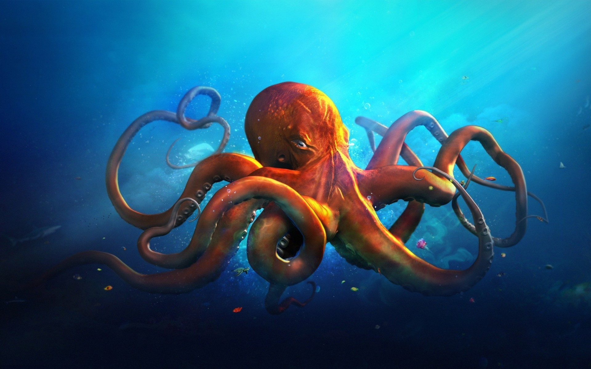 the octopus An octopus has made a brazen escape from the national aquarium in new zealand by breaking out of its tank, slithering down a 50-metre drainpipe and disappearing into the sea in scenes reminiscent.