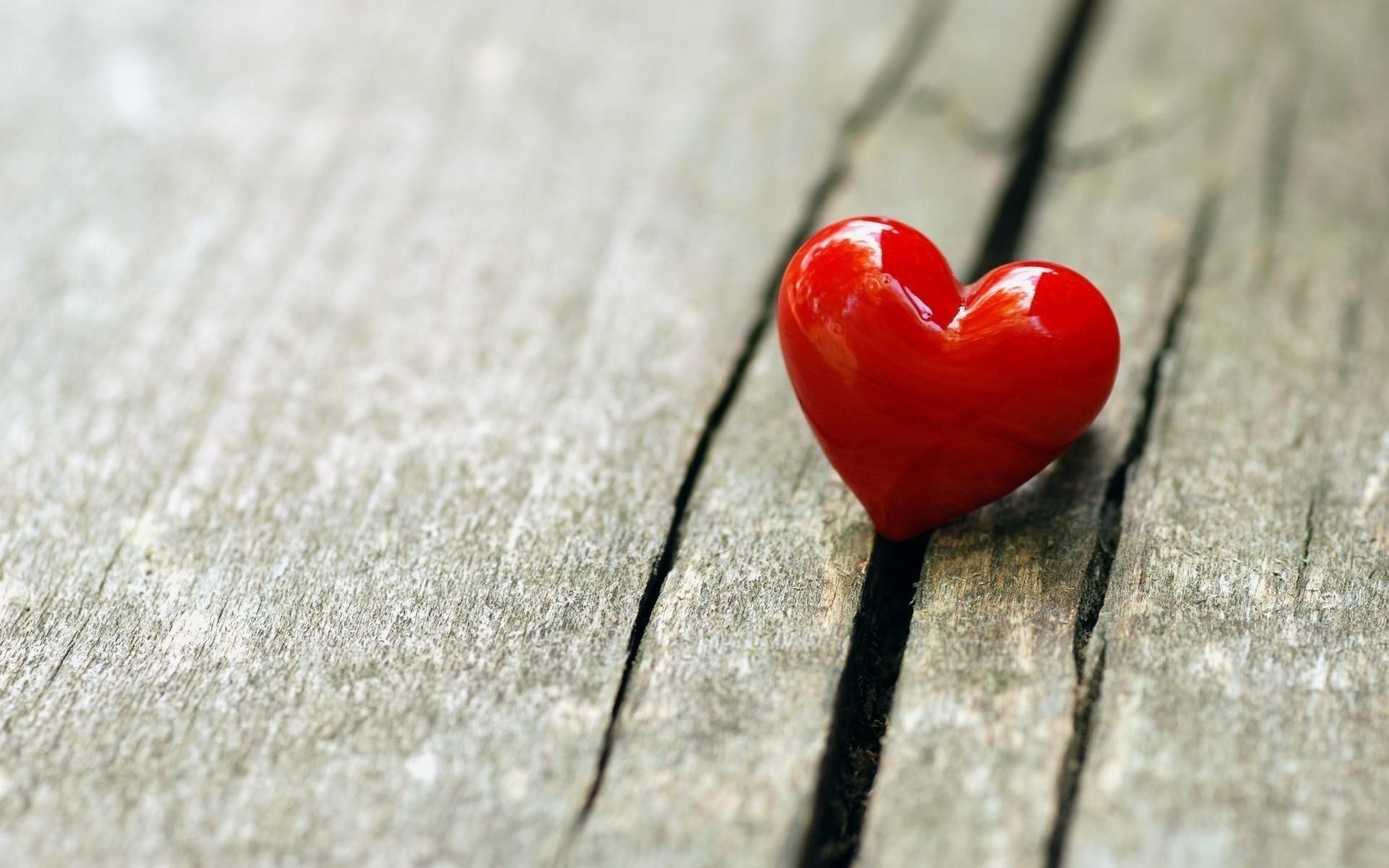 Красивая любовь обои на рабочий стол