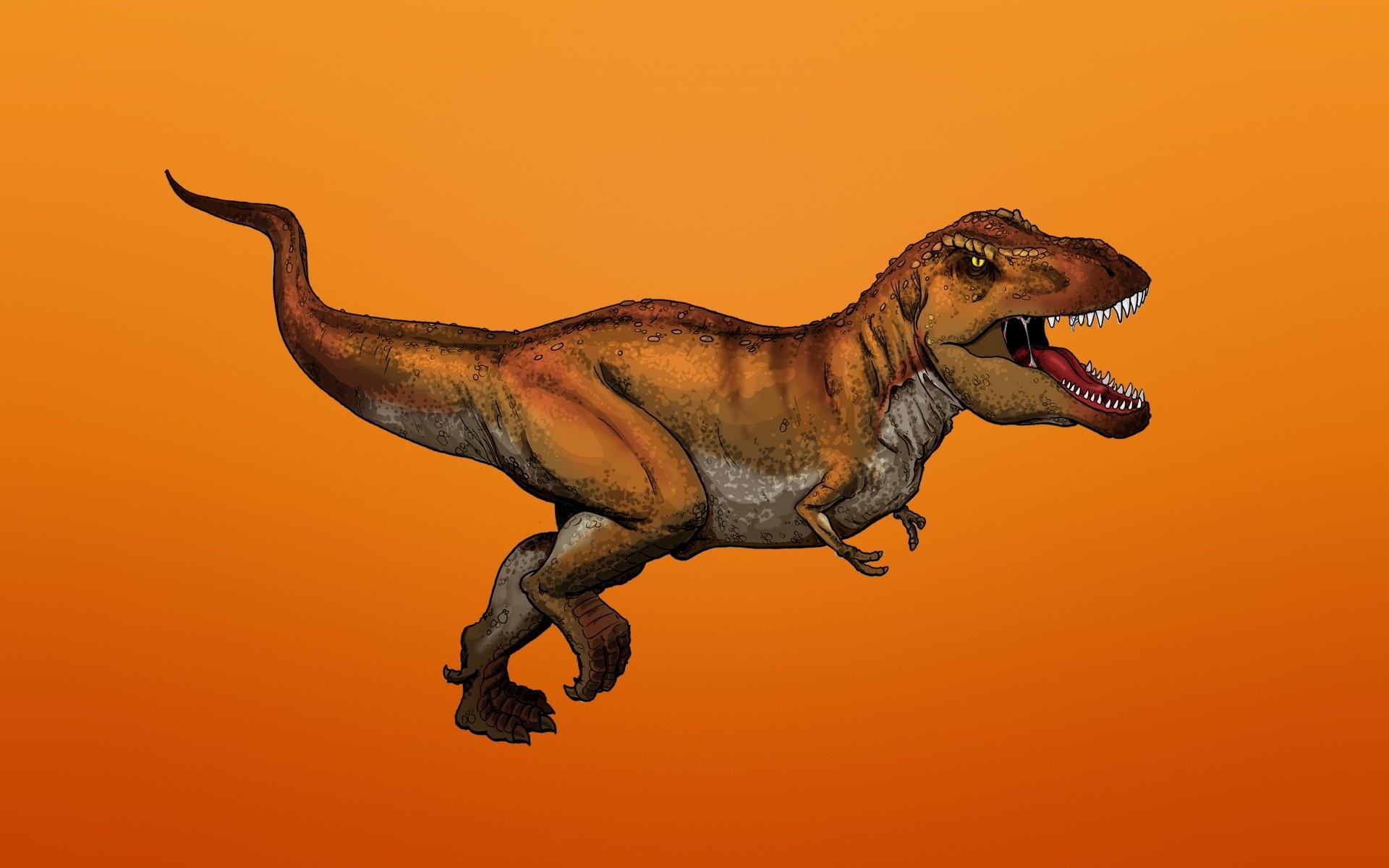Фон формат, картинки динозавра рекса