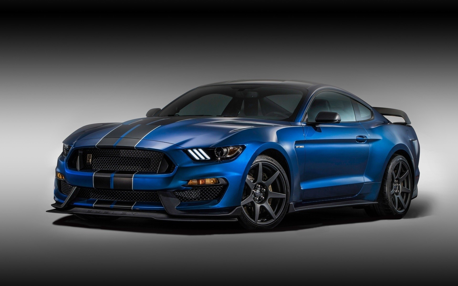 ford mustang shelby #11