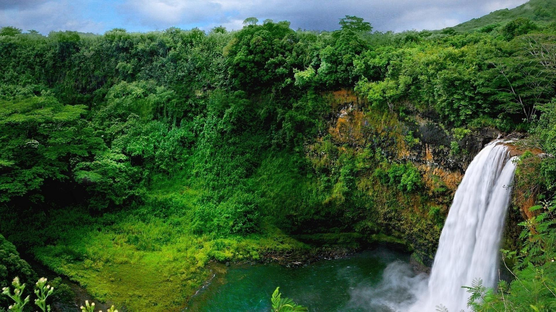 природа водопад деревья радуга  № 70374 загрузить