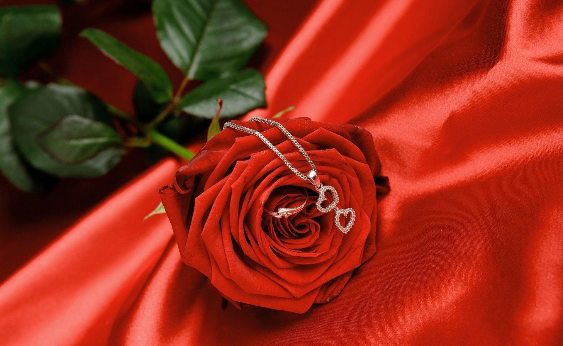 Объятия, картинка роза про любовь