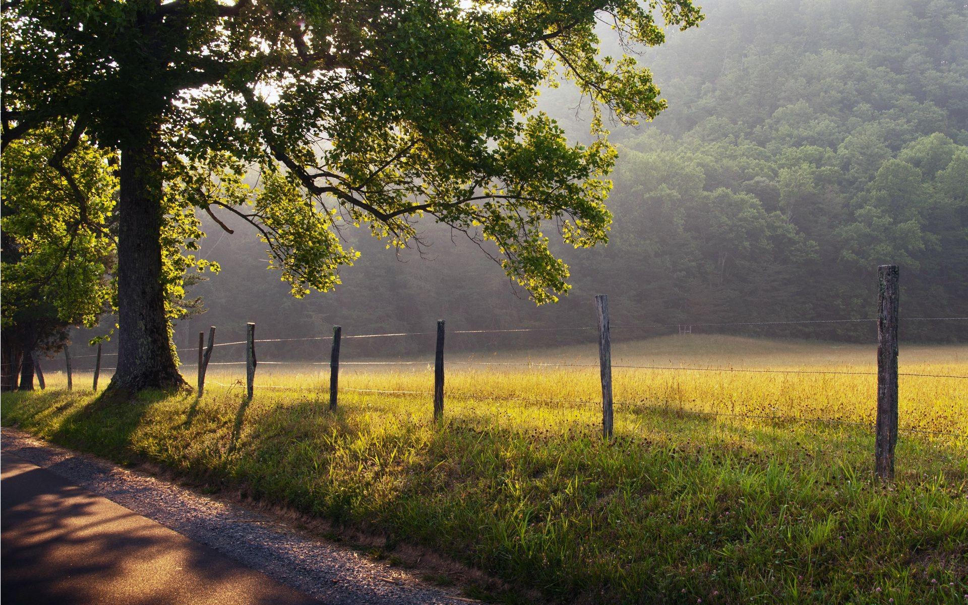 Обои Пейзаж, забор. Пейзажи foto 14
