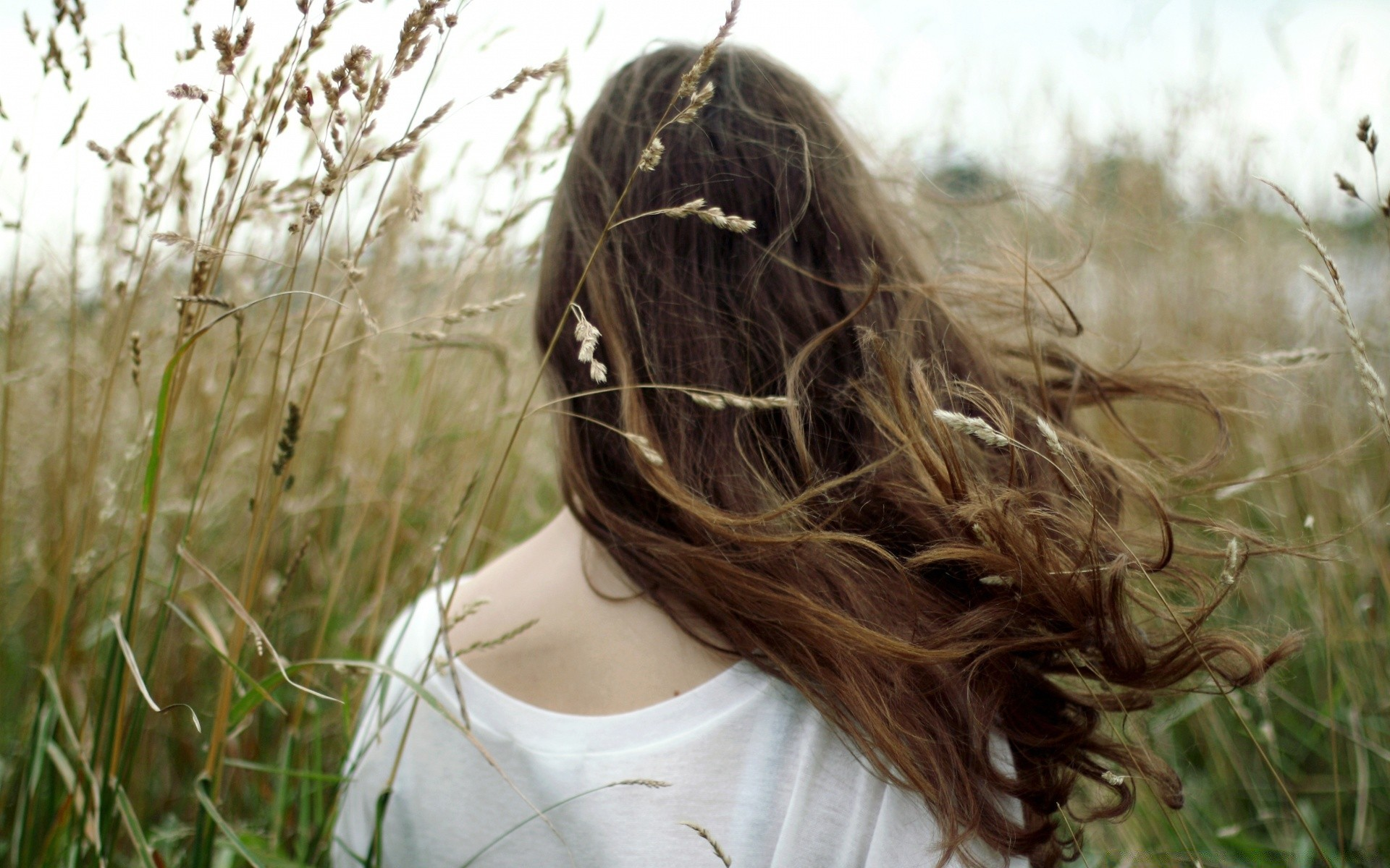 Русоволосые девушки сзади, Русые картинки (145 фото) скачать обои 21 фотография