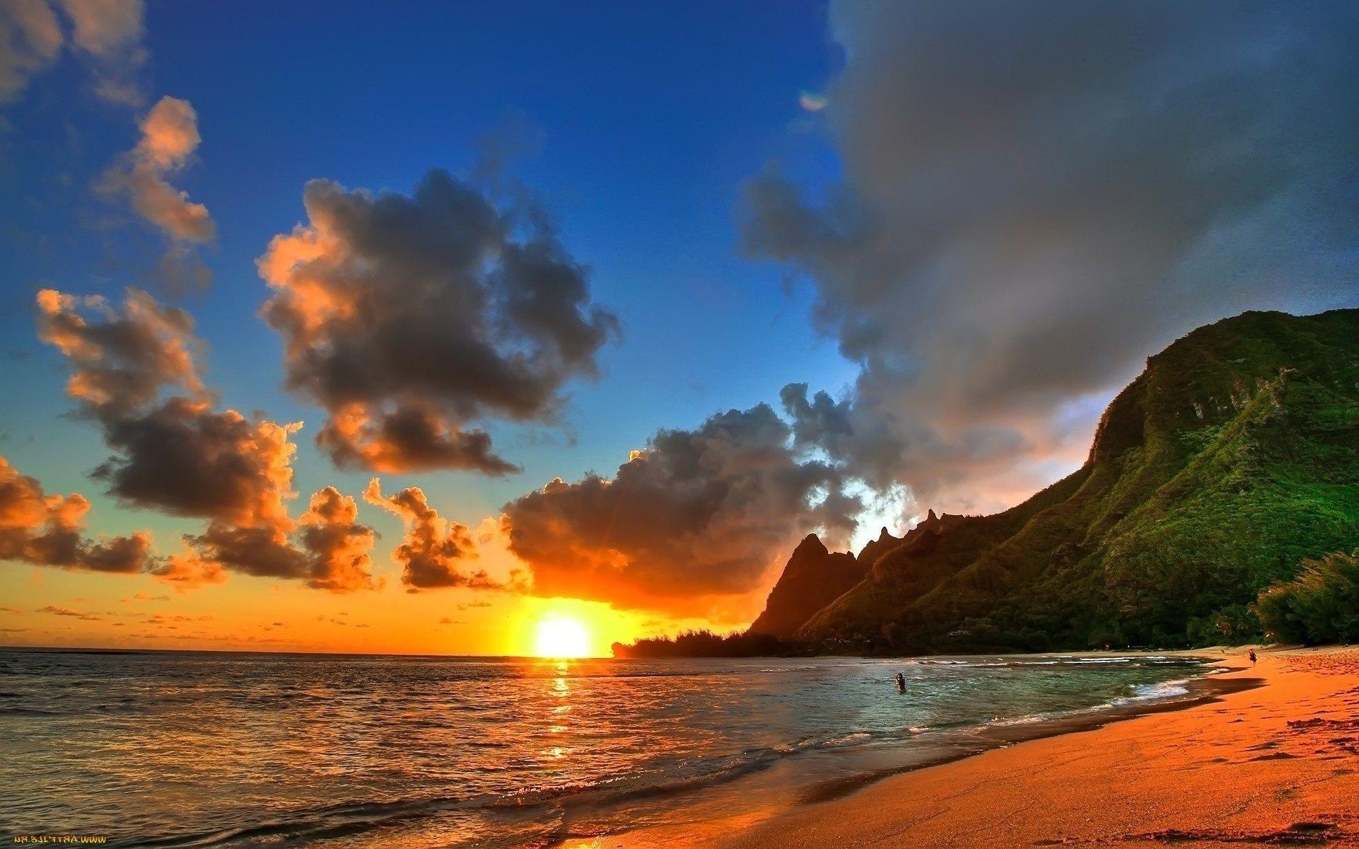 море красивые обои на телефон вянут твои