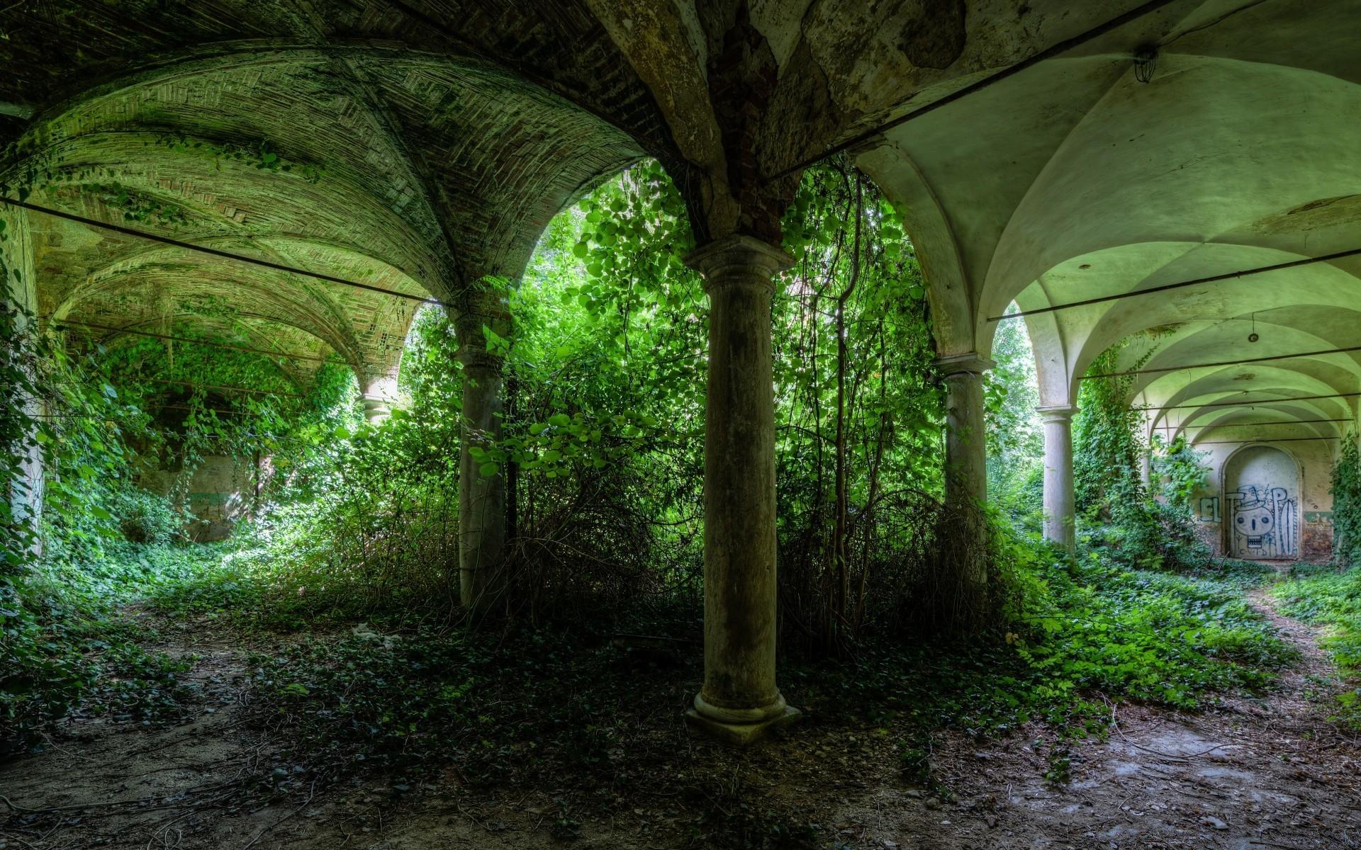 Заброшенное здание в джунглях бесплатно