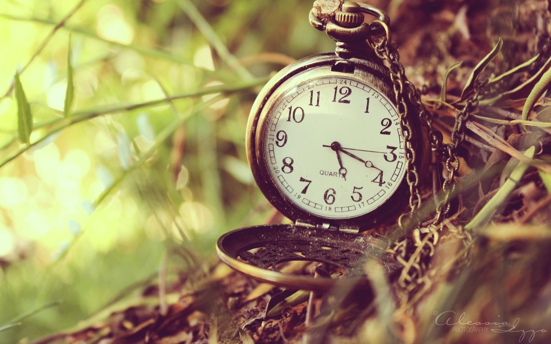 природа цветы часы  № 1520763  скачать