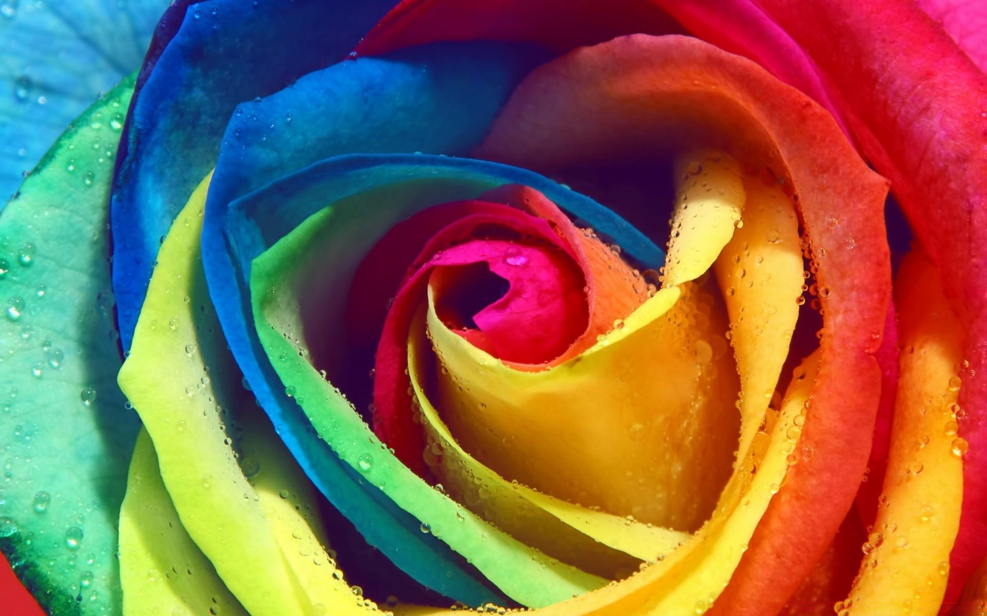Красивые картинки и яркие