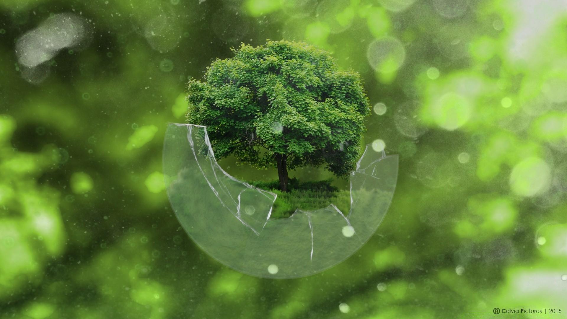 Дерево в сфере загрузить