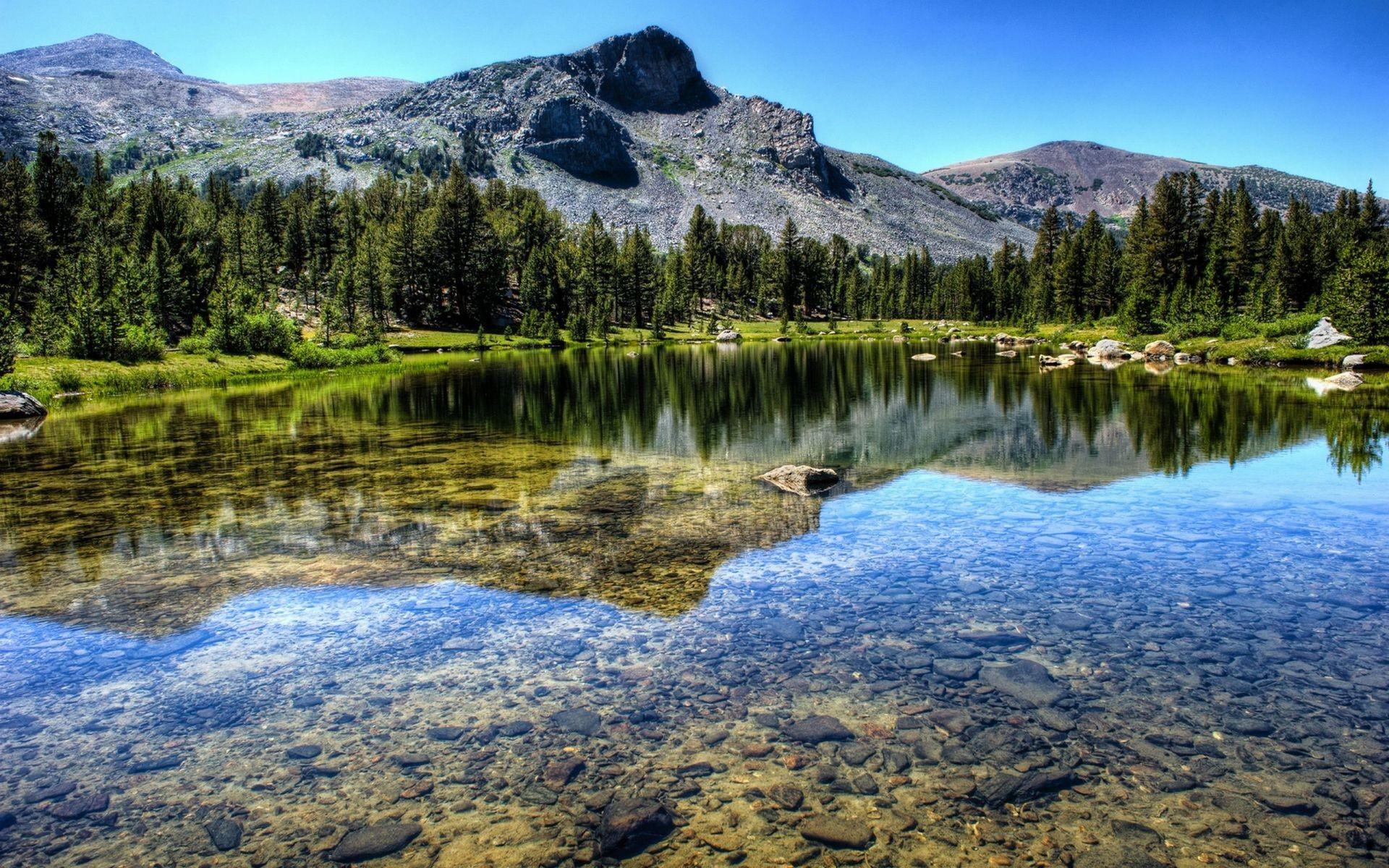 Горы лес река озеро пейзаж природа