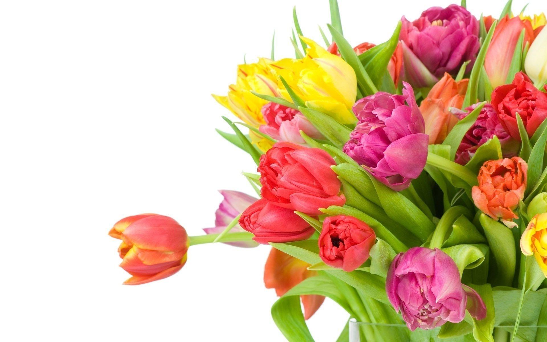 Открытка без цветов на 8 марта, вербным воскресеньем открытки