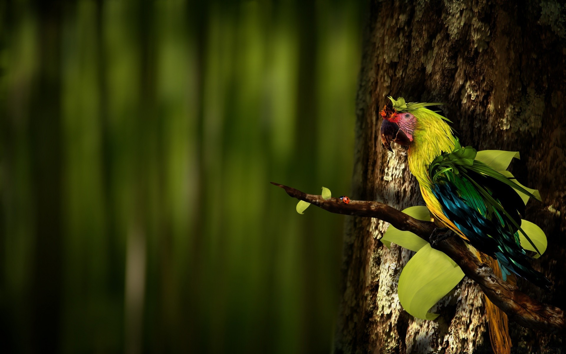 попугай на ветке бесплатно
