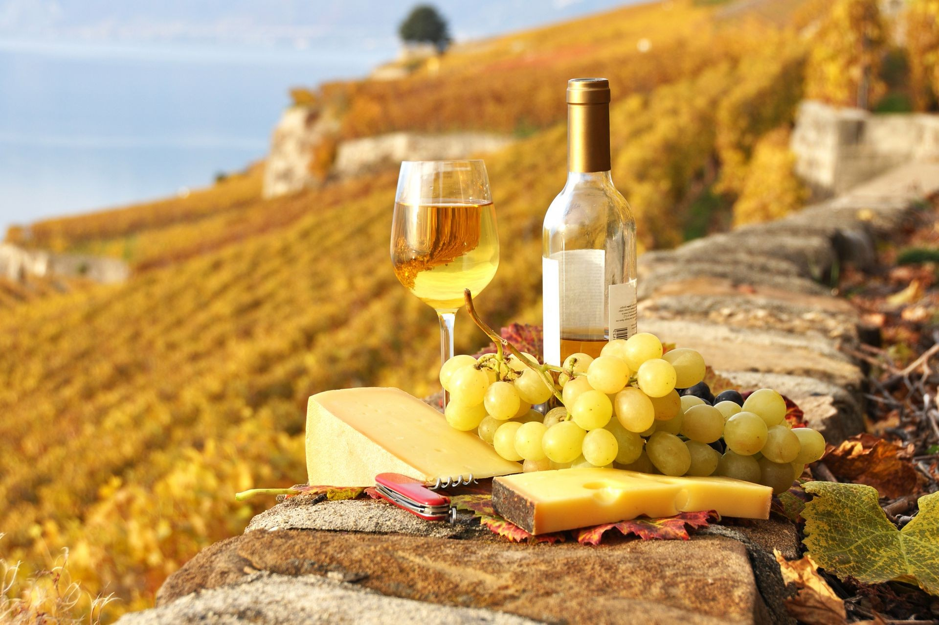 осень и вино картинки на рабочий стол бесплатно красивые картинки