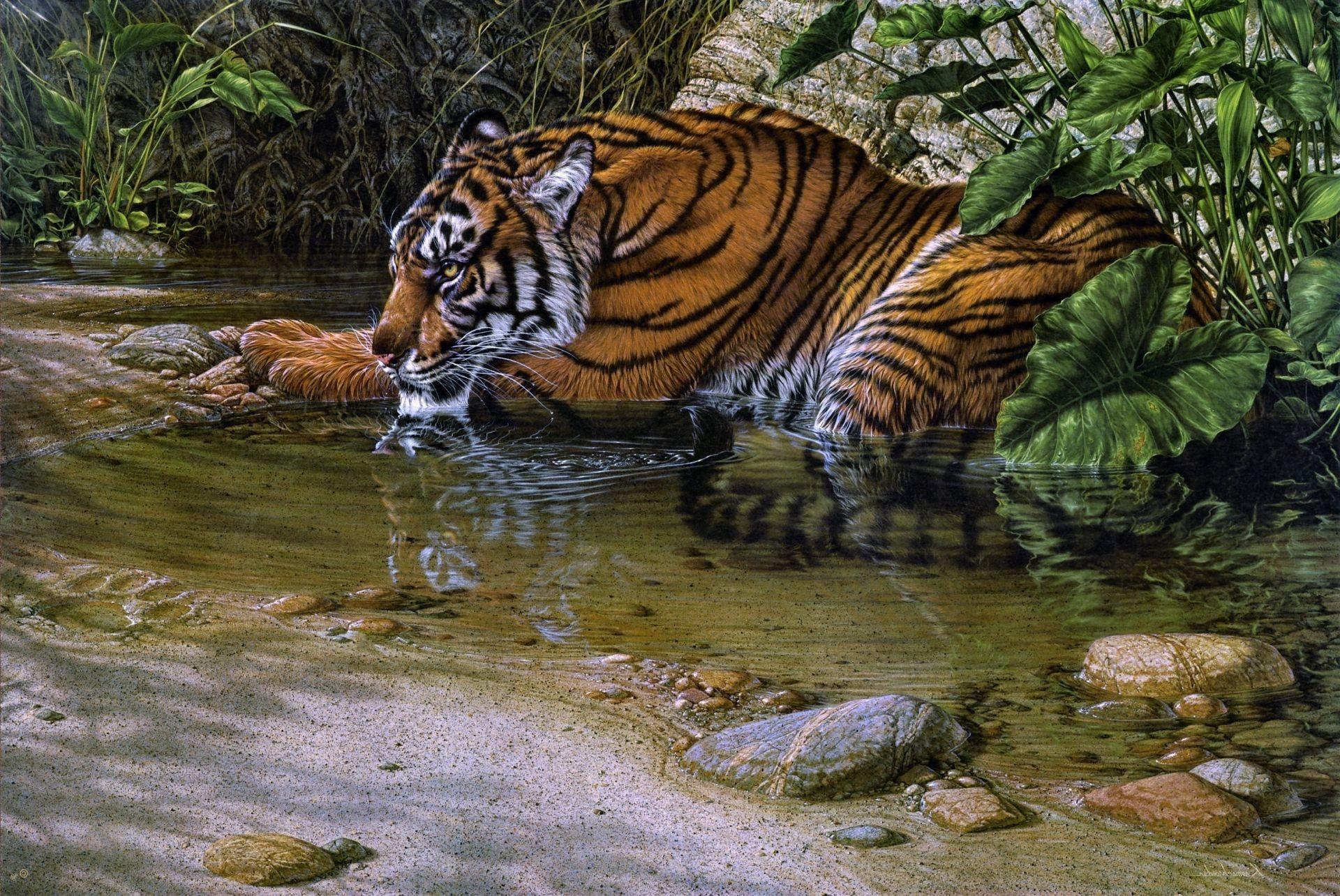 рисунки животных обои