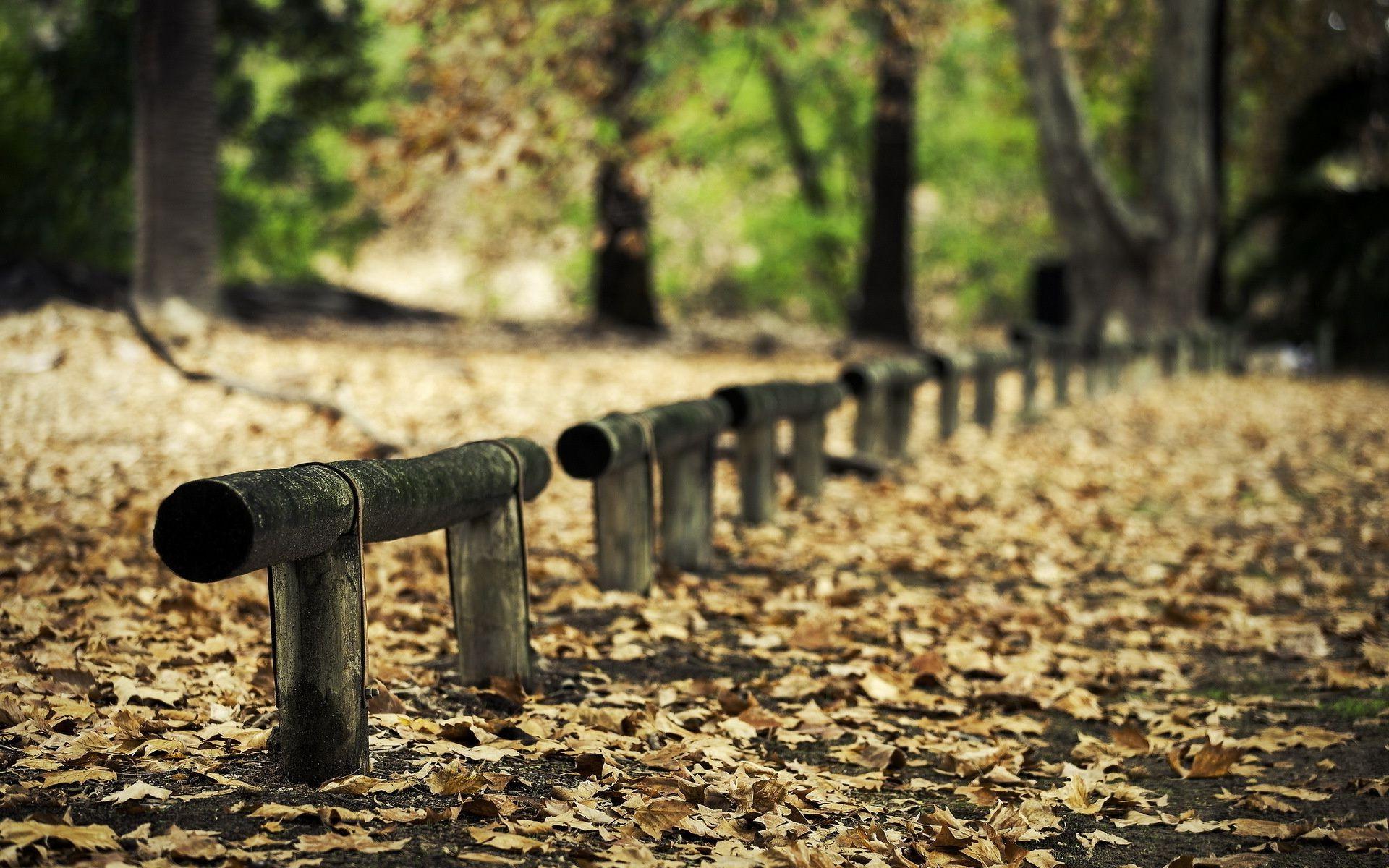 дорога забор кусты road the fence bushes загрузить