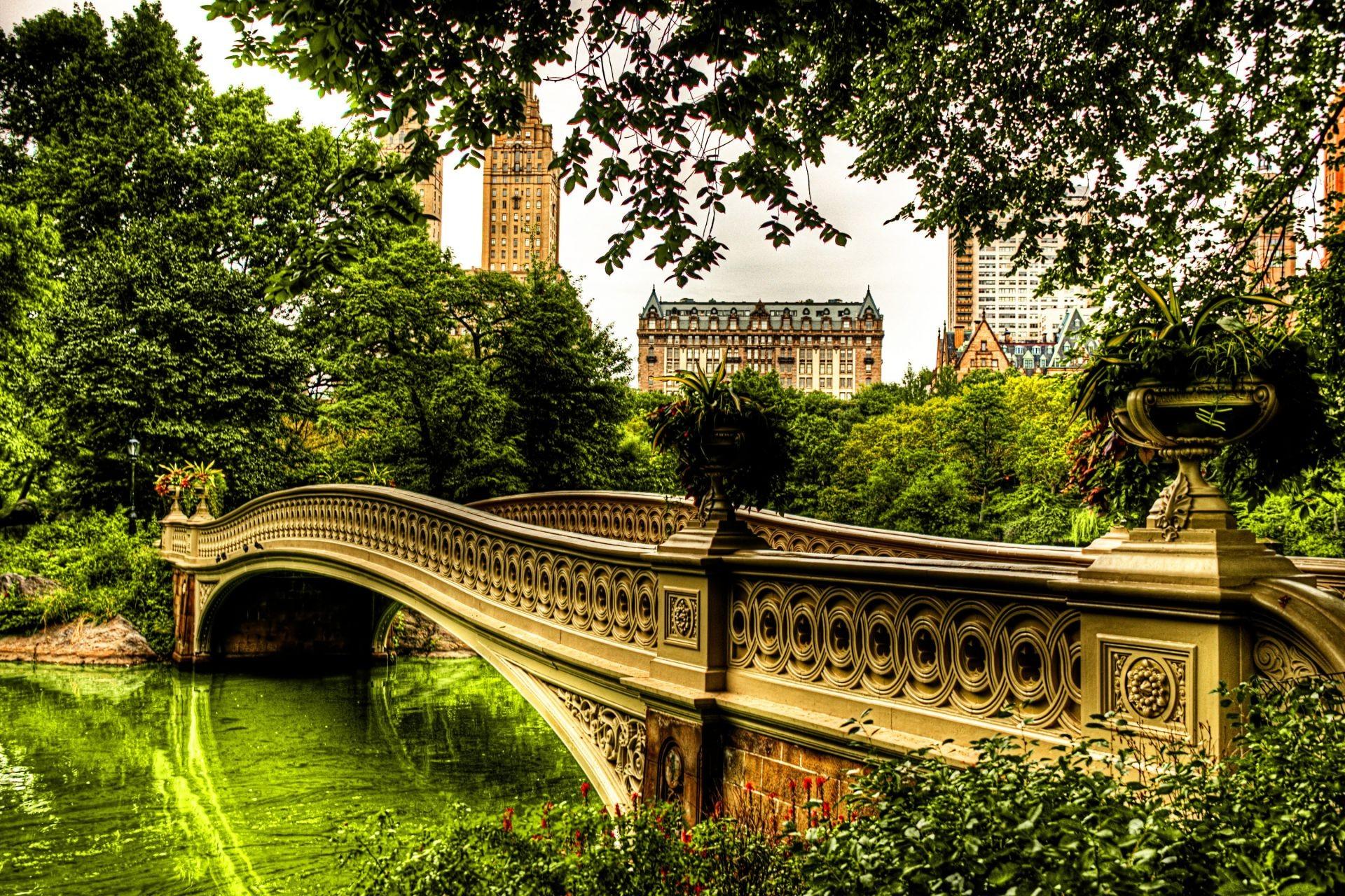 Здания мост лес дома деревья река