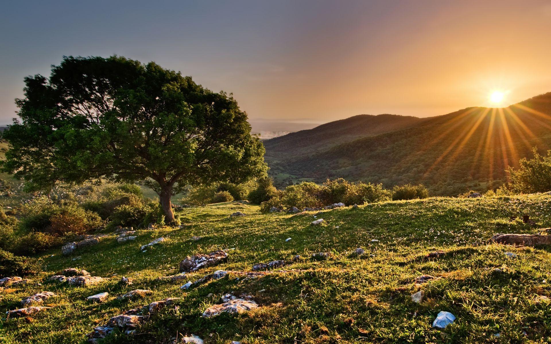 закат горы деревья загрузить