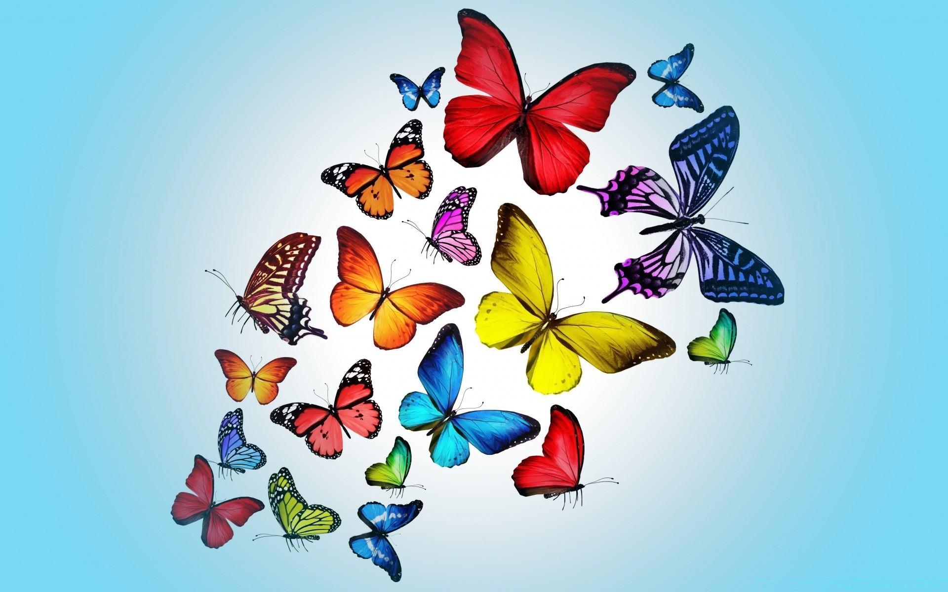 Для, бабочки в картинках надпись