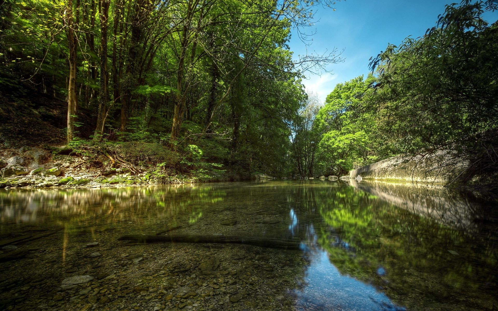 озеро деревья зелень лес лето  № 3246425 загрузить