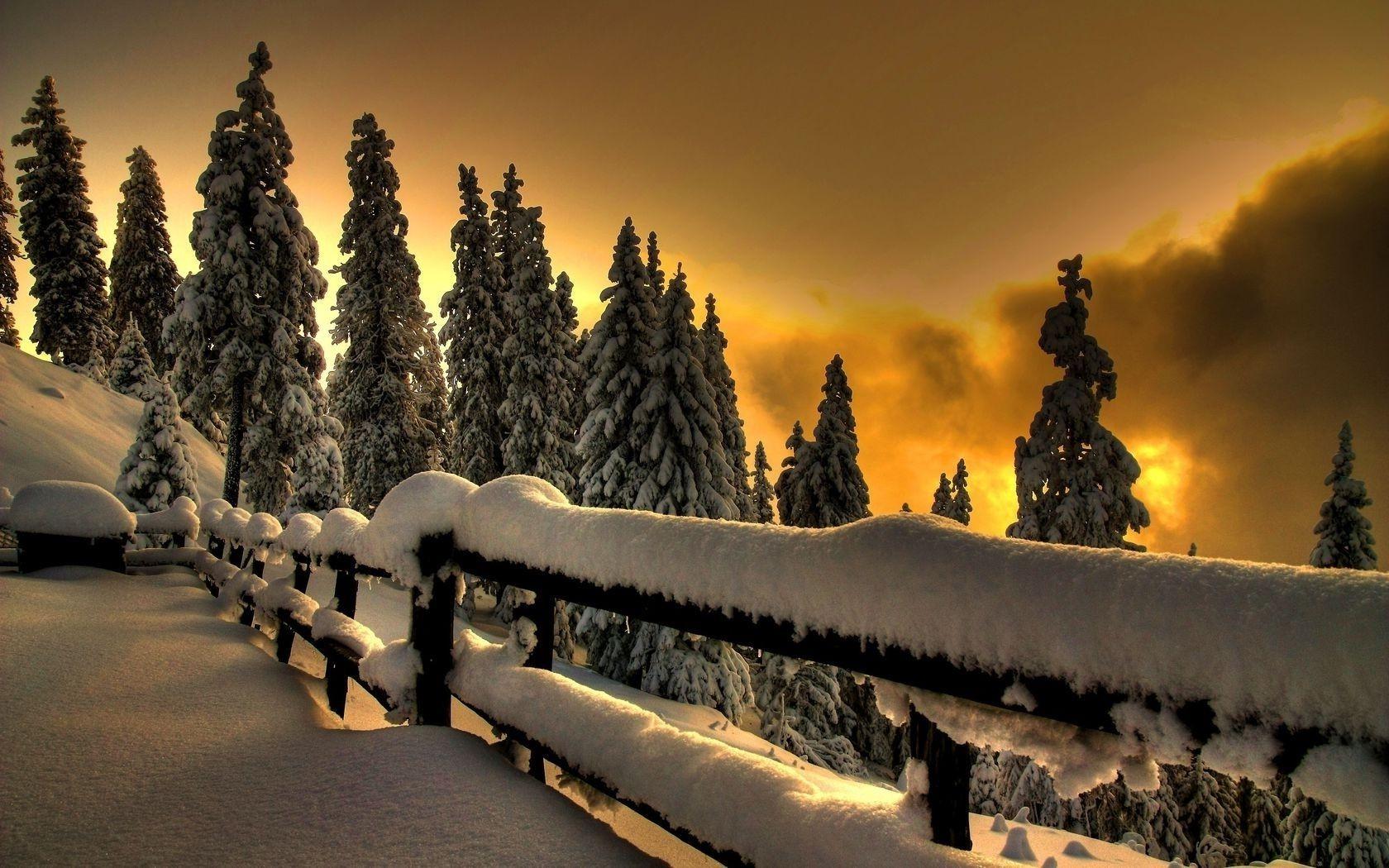 Новый год фото красивые природа