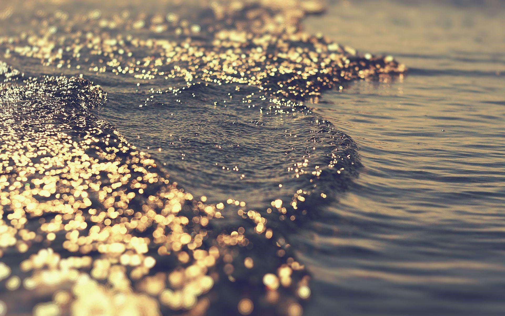 картинки солнце жизнь вода это промышленная фиалка