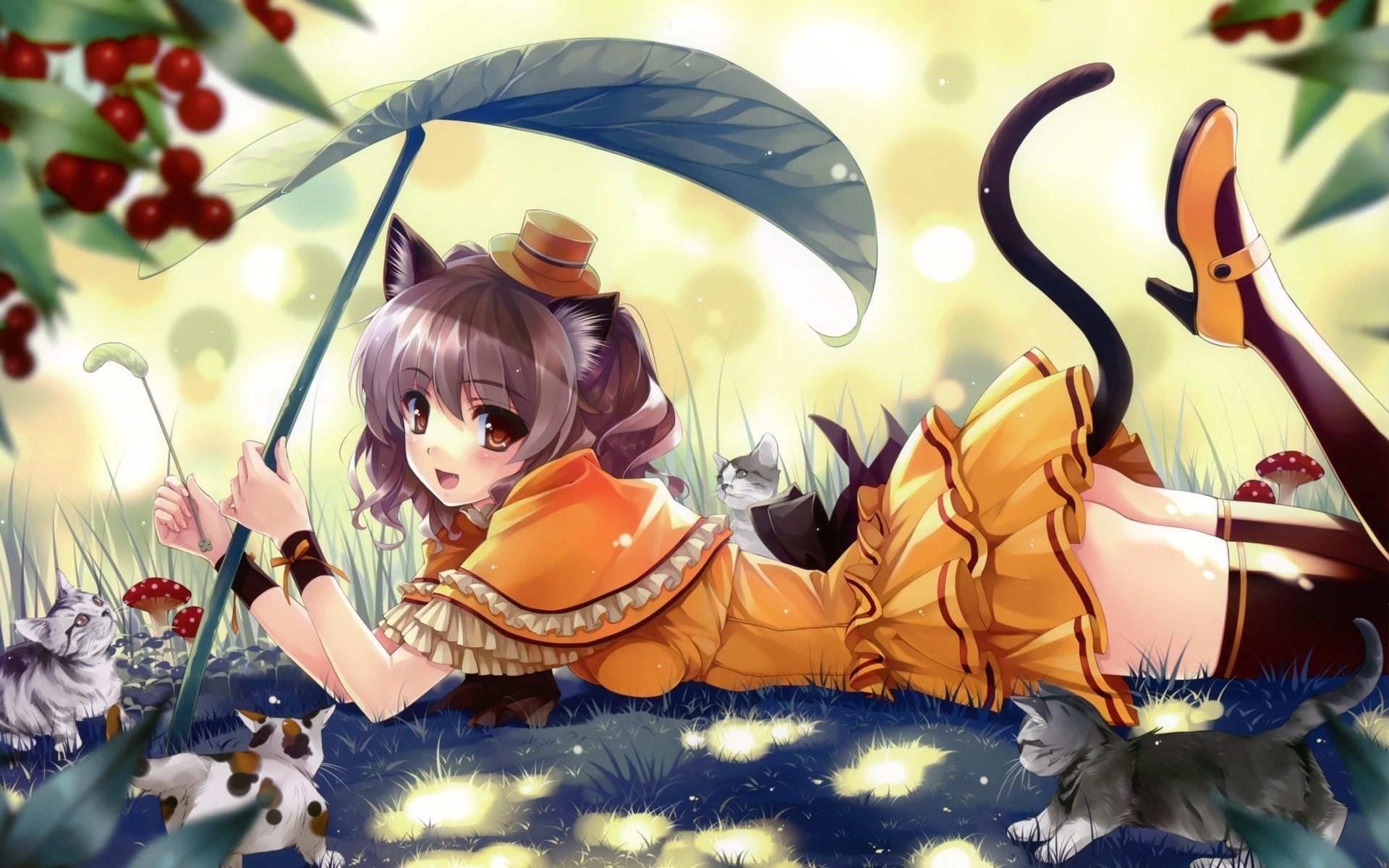 Картинки с аниме кошками