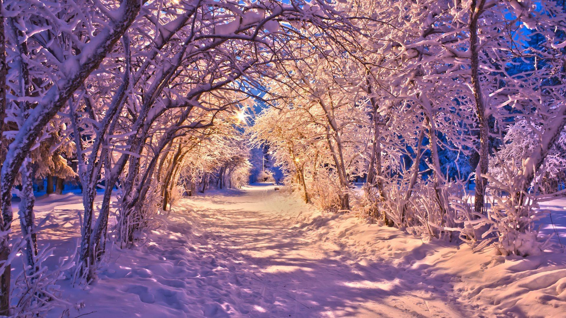 Чудеса зимы в хорошем качестве