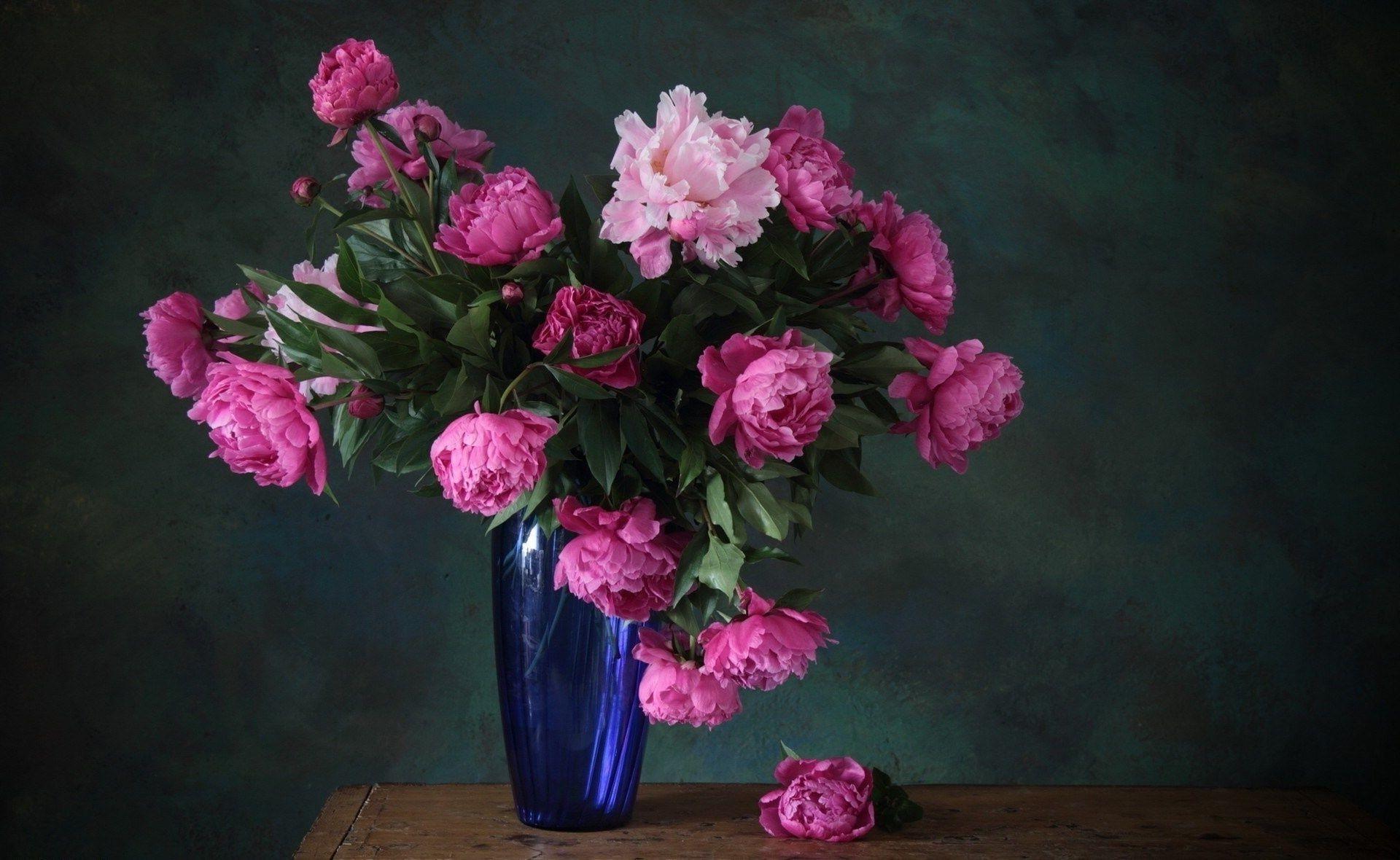 Как правильно засушить розы в домашних условиях  ФОТО
